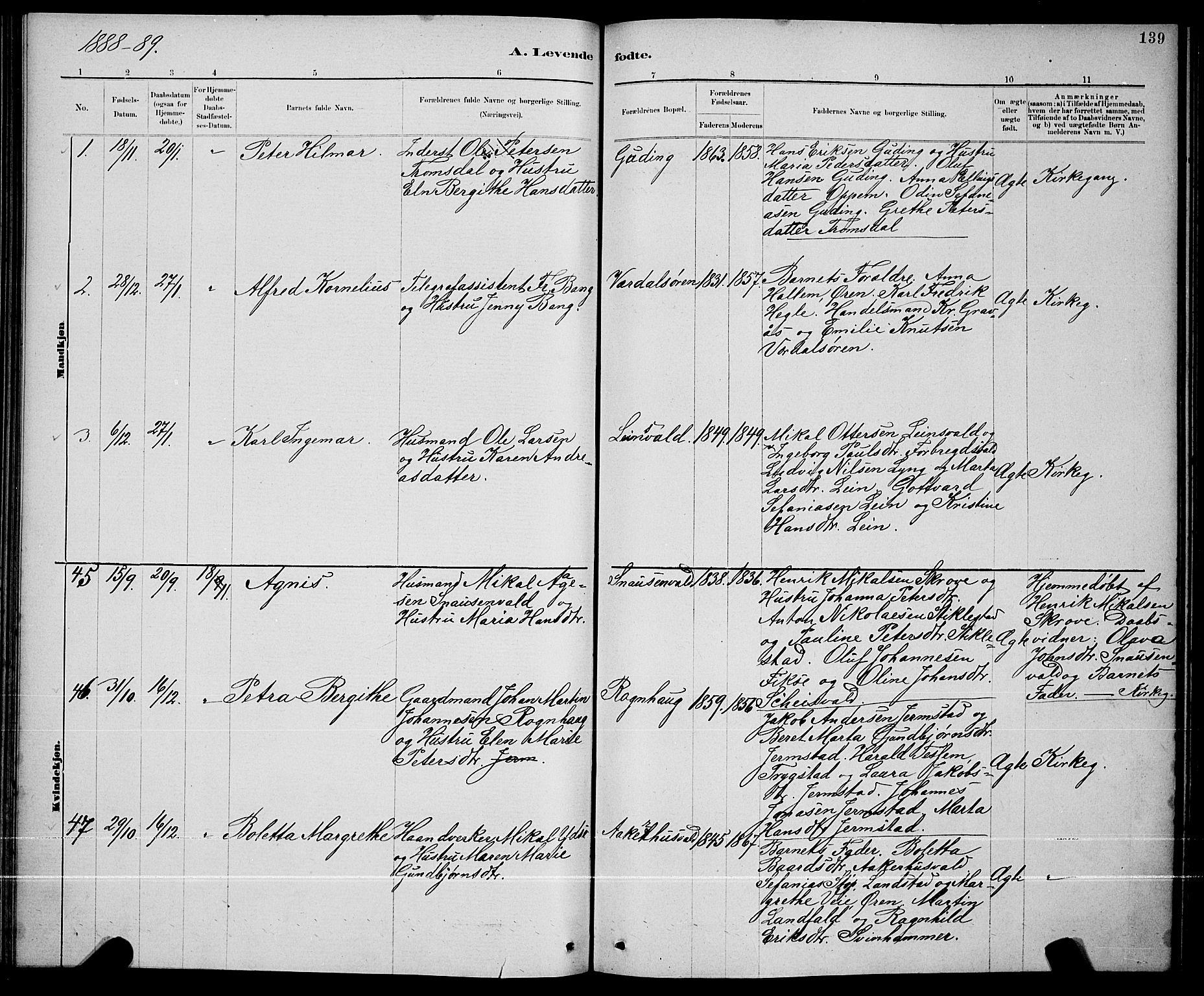 SAT, Ministerialprotokoller, klokkerbøker og fødselsregistre - Nord-Trøndelag, 723/L0256: Klokkerbok nr. 723C04, 1879-1890, s. 139