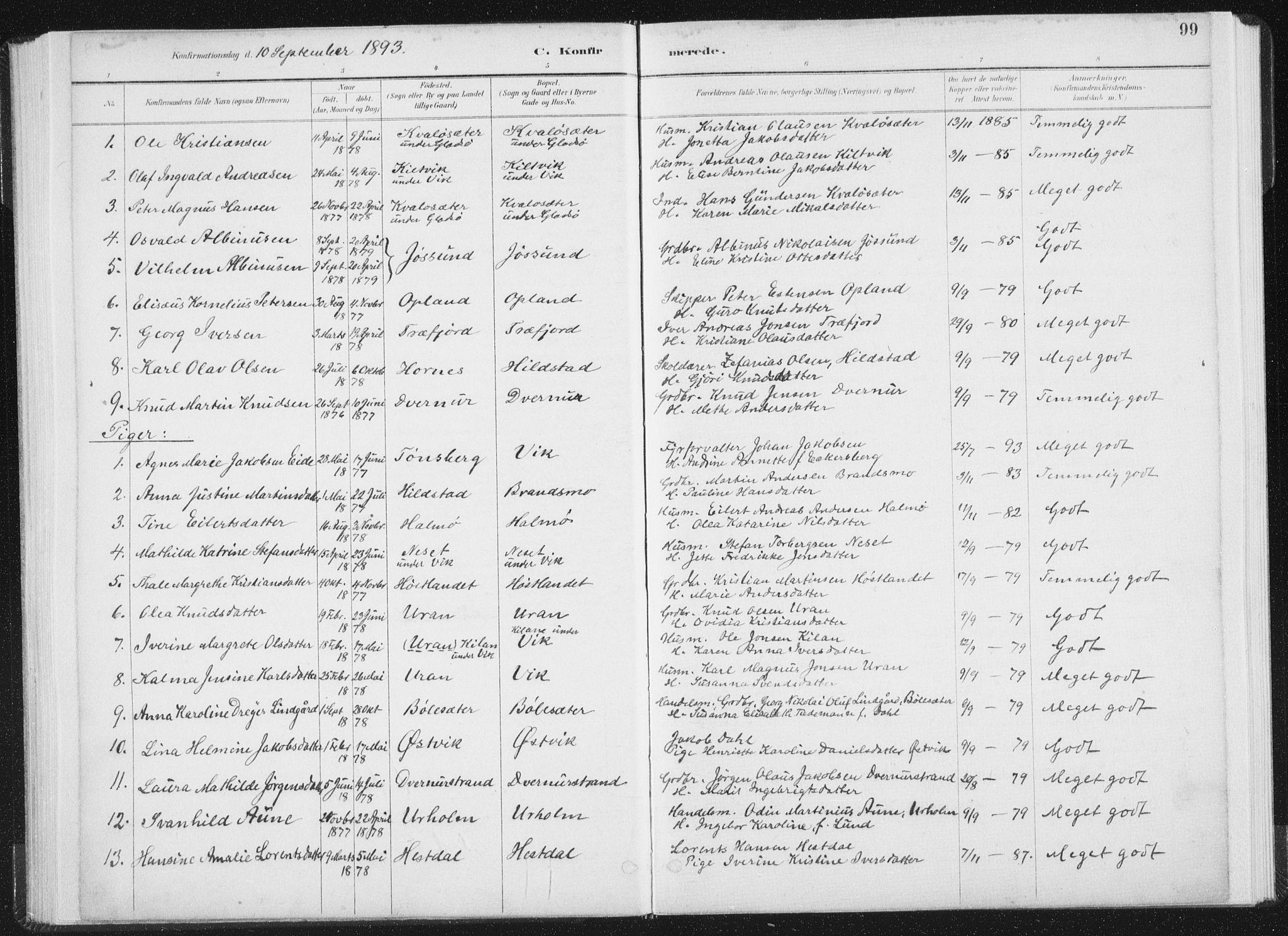 SAT, Ministerialprotokoller, klokkerbøker og fødselsregistre - Nord-Trøndelag, 771/L0597: Ministerialbok nr. 771A04, 1885-1910, s. 99