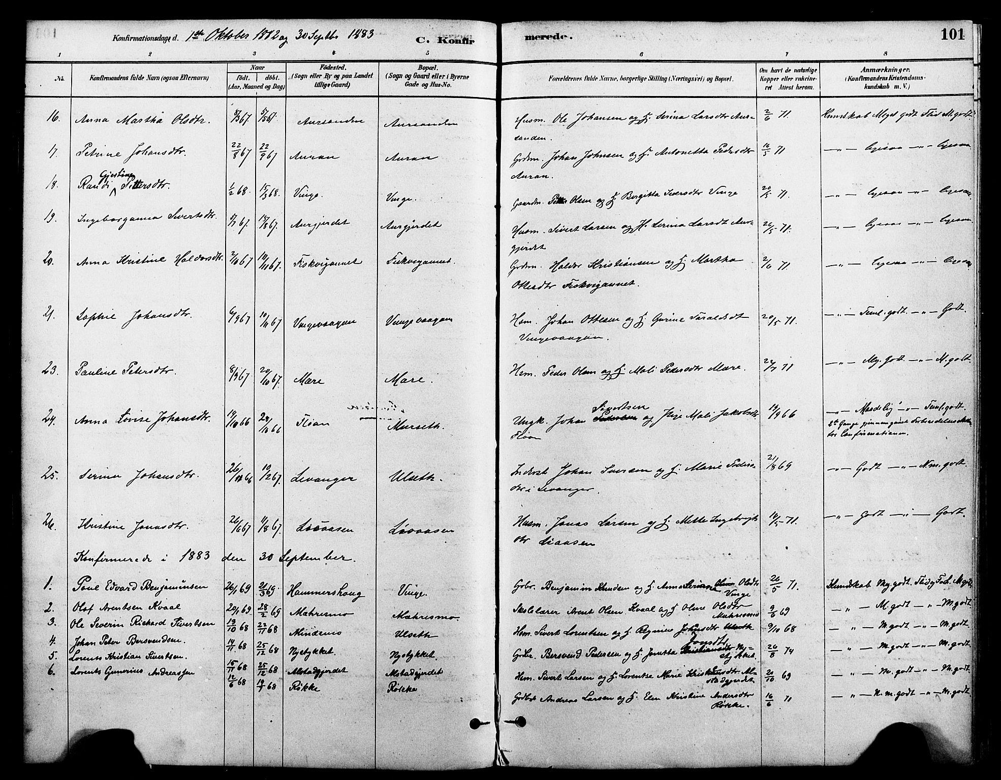 SAT, Ministerialprotokoller, klokkerbøker og fødselsregistre - Nord-Trøndelag, 712/L0100: Ministerialbok nr. 712A01, 1880-1900, s. 101