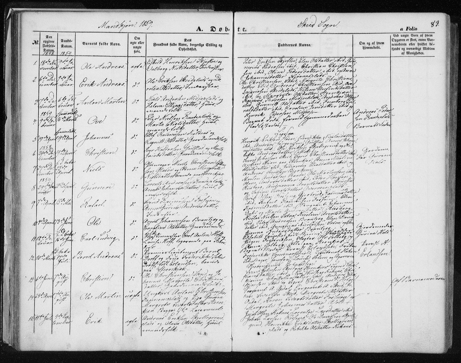 SAT, Ministerialprotokoller, klokkerbøker og fødselsregistre - Nord-Trøndelag, 735/L0342: Ministerialbok nr. 735A07 /2, 1849-1862, s. 83