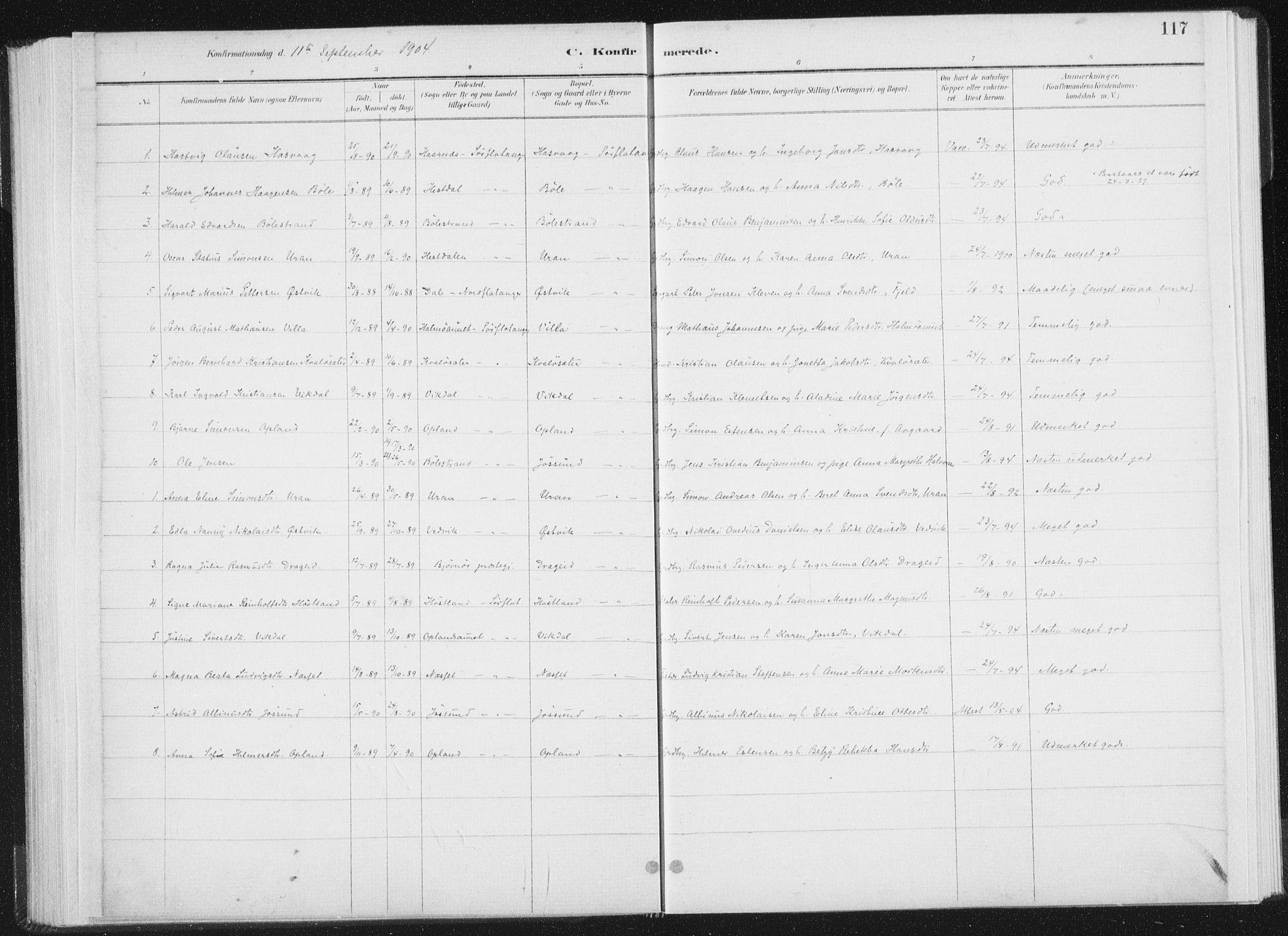 SAT, Ministerialprotokoller, klokkerbøker og fødselsregistre - Nord-Trøndelag, 771/L0597: Ministerialbok nr. 771A04, 1885-1910, s. 117