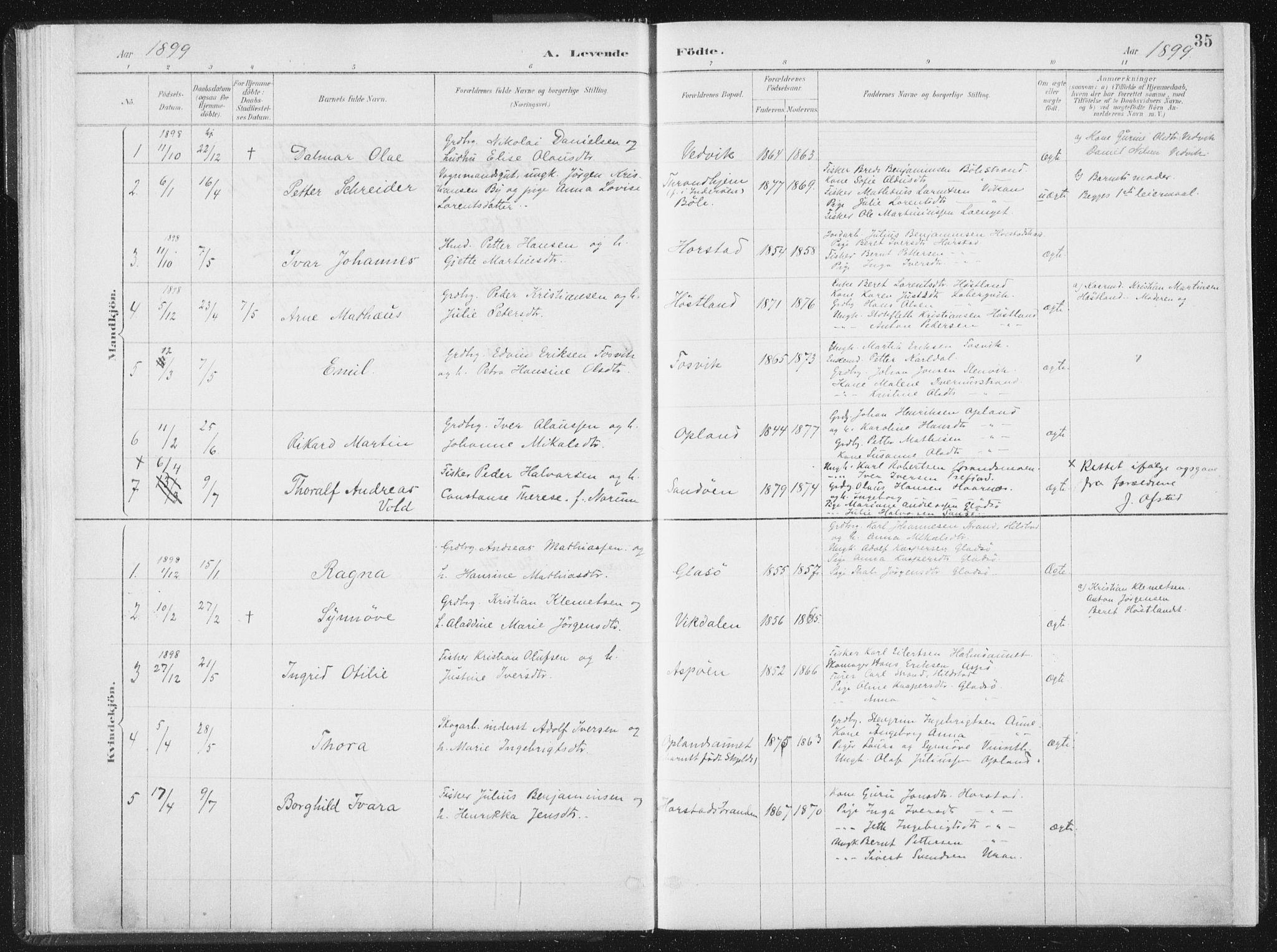 SAT, Ministerialprotokoller, klokkerbøker og fødselsregistre - Nord-Trøndelag, 771/L0597: Ministerialbok nr. 771A04, 1885-1910, s. 35