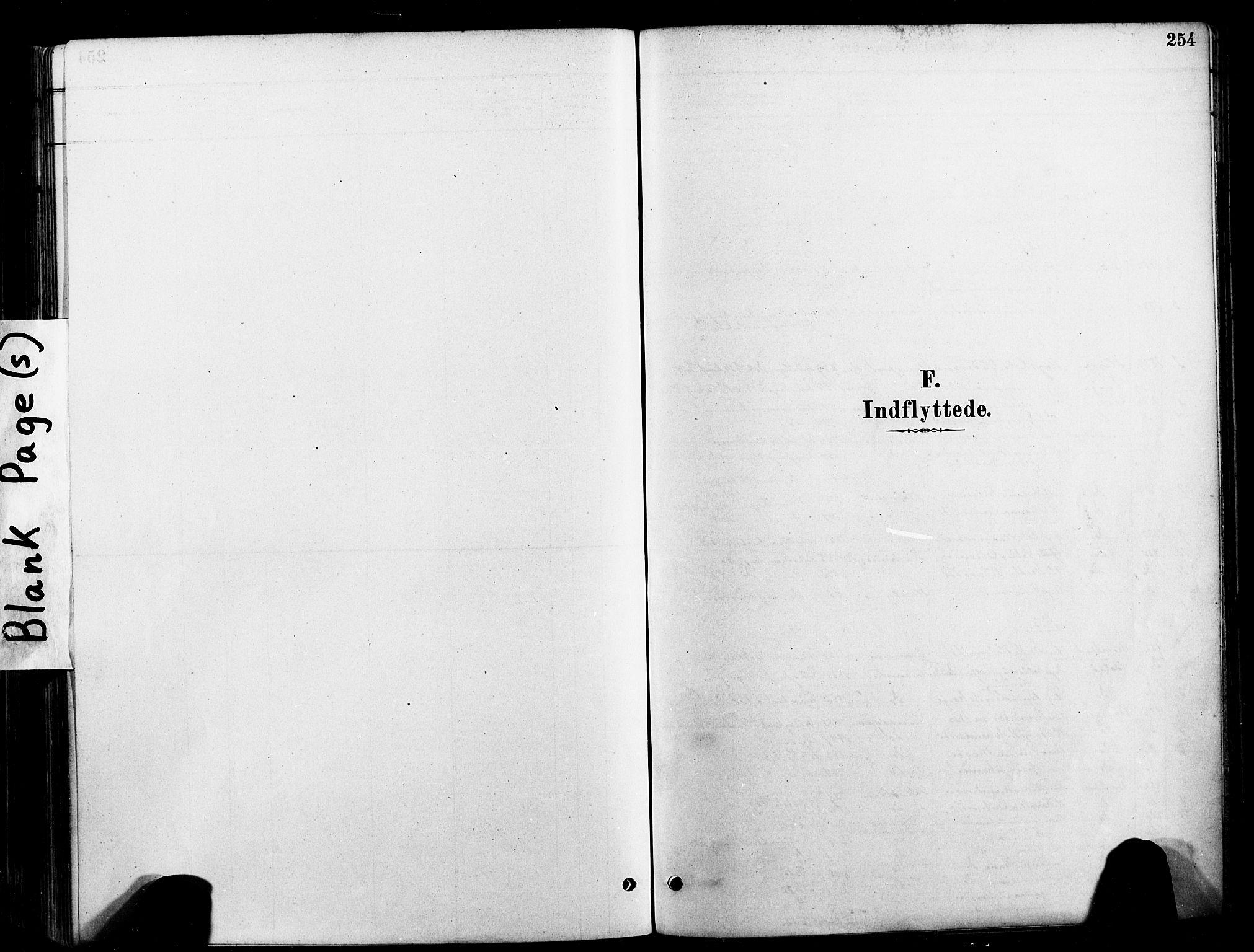 SAT, Ministerialprotokoller, klokkerbøker og fødselsregistre - Nord-Trøndelag, 709/L0077: Ministerialbok nr. 709A17, 1880-1895, s. 254