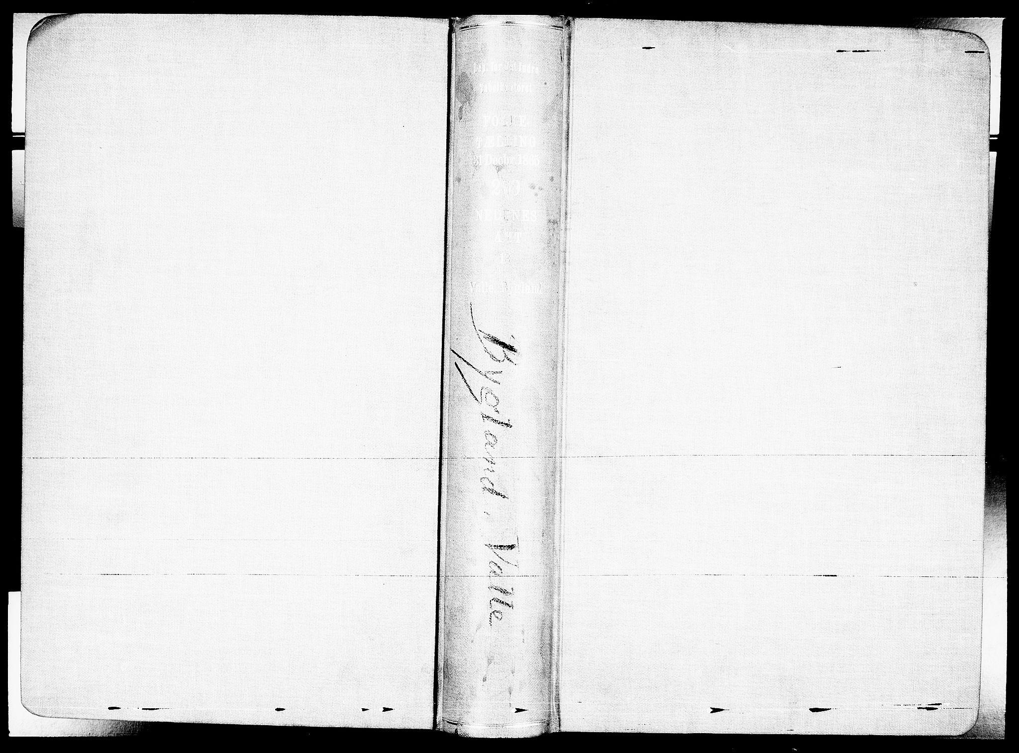 RA, Folketelling 1865 for 0940P Valle prestegjeld, 1865, s. 2