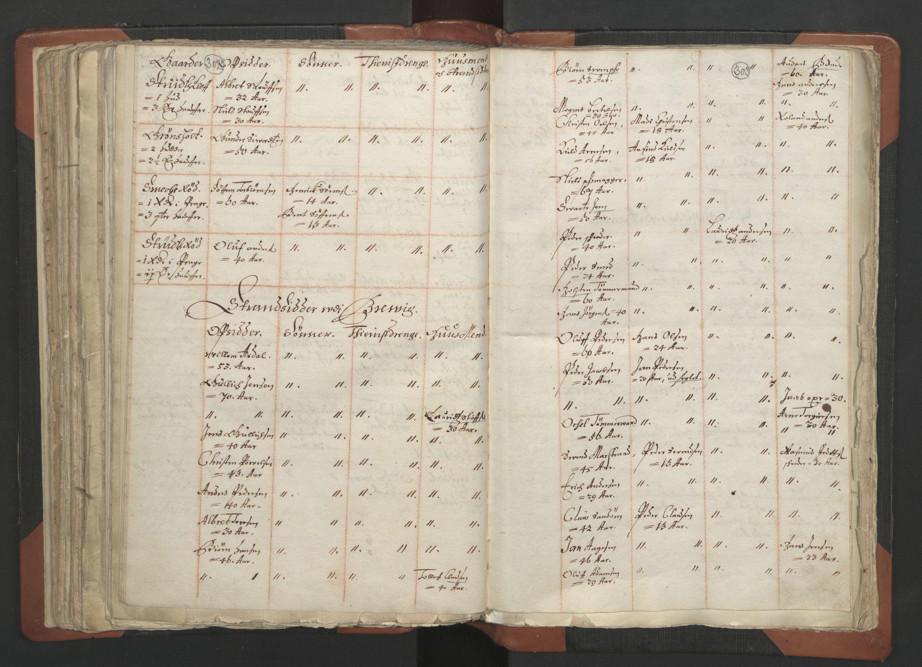 RA, Sogneprestenes manntall 1664-1666, nr. 12: Øvre Telemark prosti, Nedre Telemark prosti og Bamble prosti, 1664-1666, s. 302-303