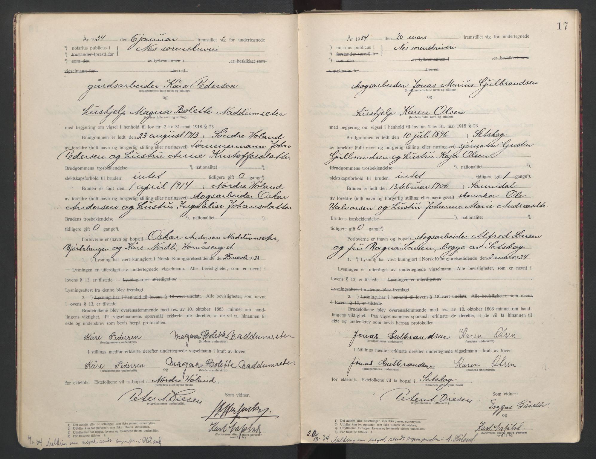 SAO, Nes tingrett, L/Lc/Lca/L0001: Vigselbok, 1920-1943, s. 17