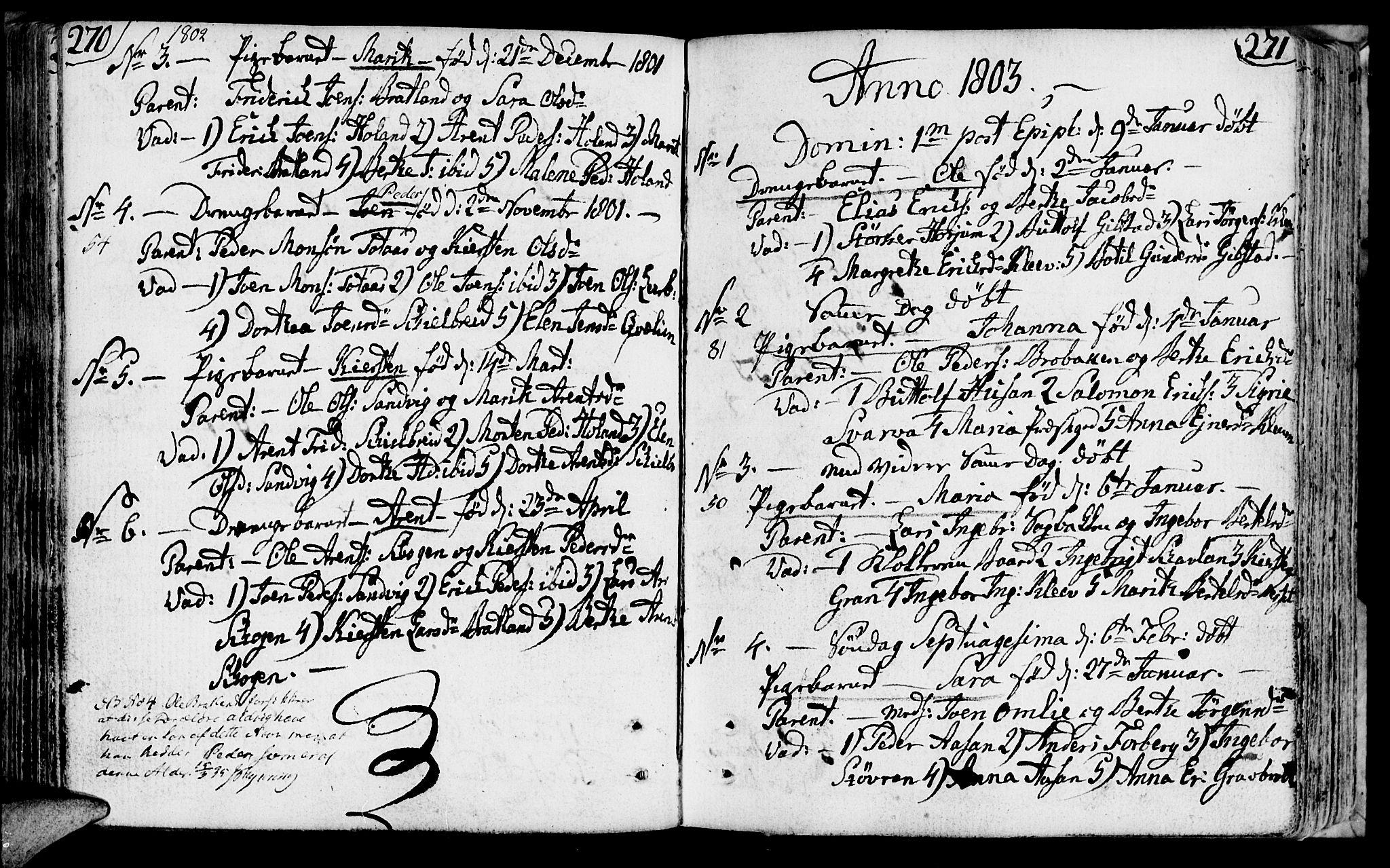 SAT, Ministerialprotokoller, klokkerbøker og fødselsregistre - Nord-Trøndelag, 749/L0468: Ministerialbok nr. 749A02, 1787-1817, s. 270-271