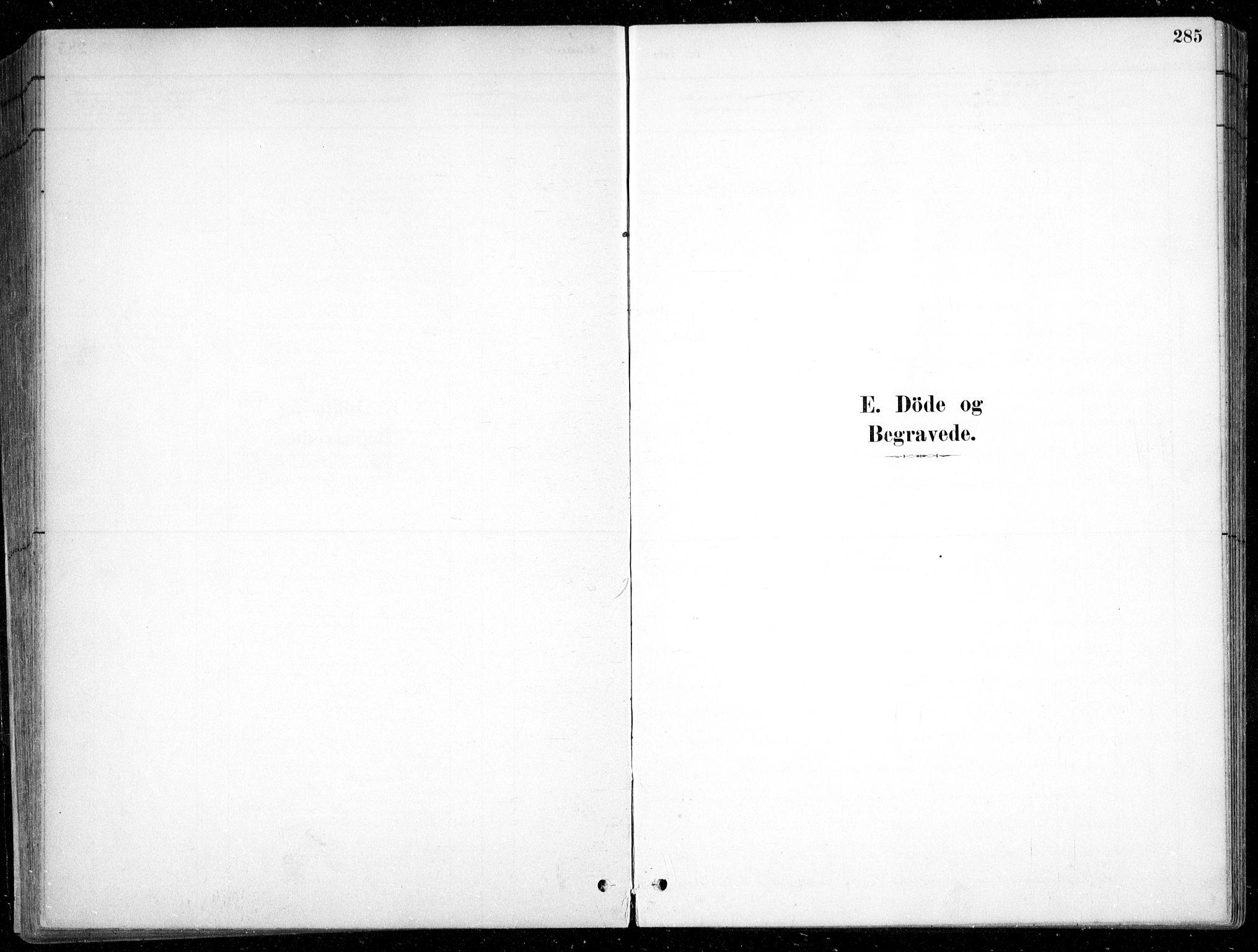 SAK, Fjære sokneprestkontor, F/Fb/L0011: Klokkerbok nr. B 11, 1881-1905, s. 285
