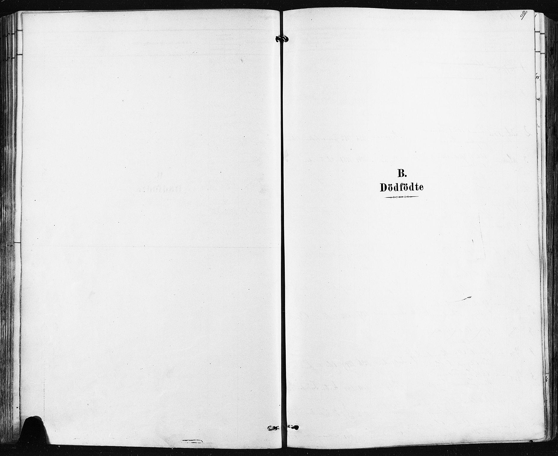 SAKO, Borre kirkebøker, F/Fa/L0009: Ministerialbok nr. I 9, 1878-1896, s. 89