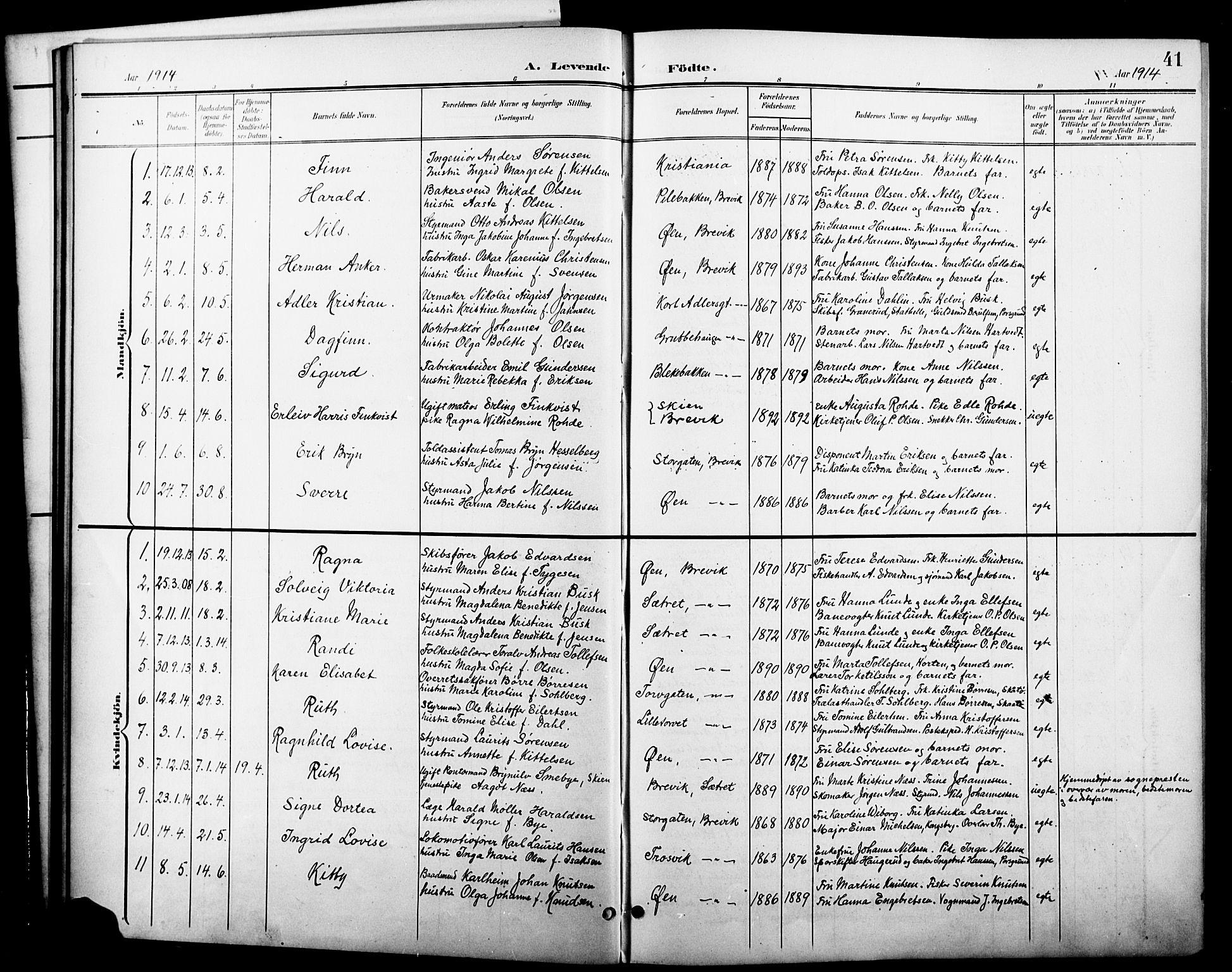 SAKO, Brevik kirkebøker, G/Ga/L0005: Klokkerbok nr. 5, 1901-1924, s. 41