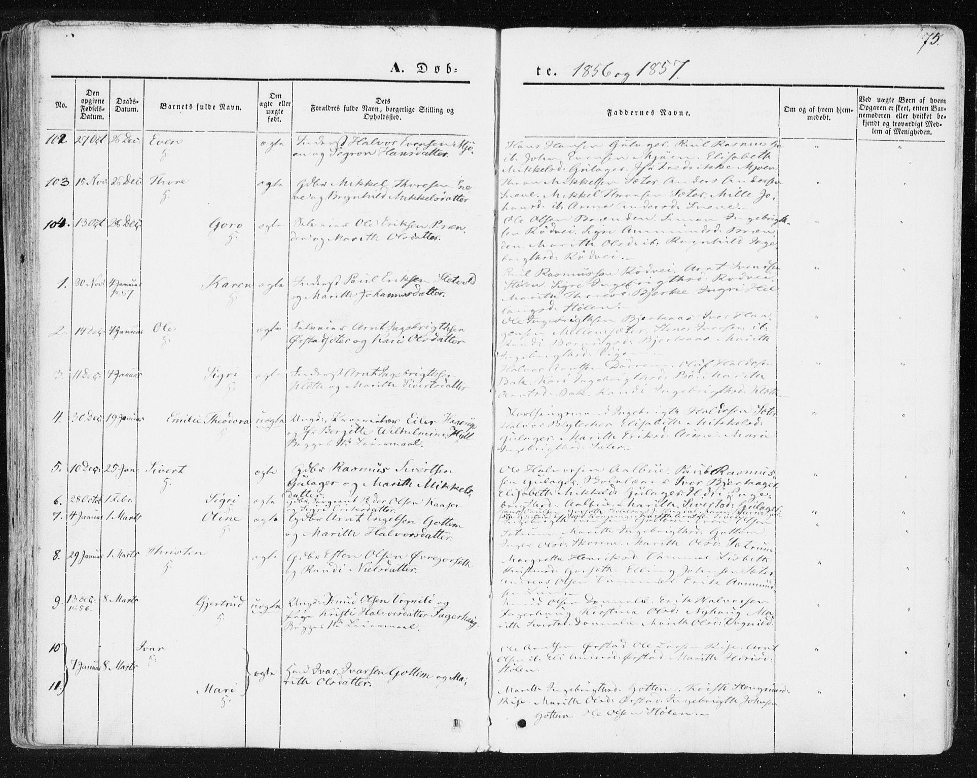 SAT, Ministerialprotokoller, klokkerbøker og fødselsregistre - Sør-Trøndelag, 678/L0899: Ministerialbok nr. 678A08, 1848-1872, s. 75