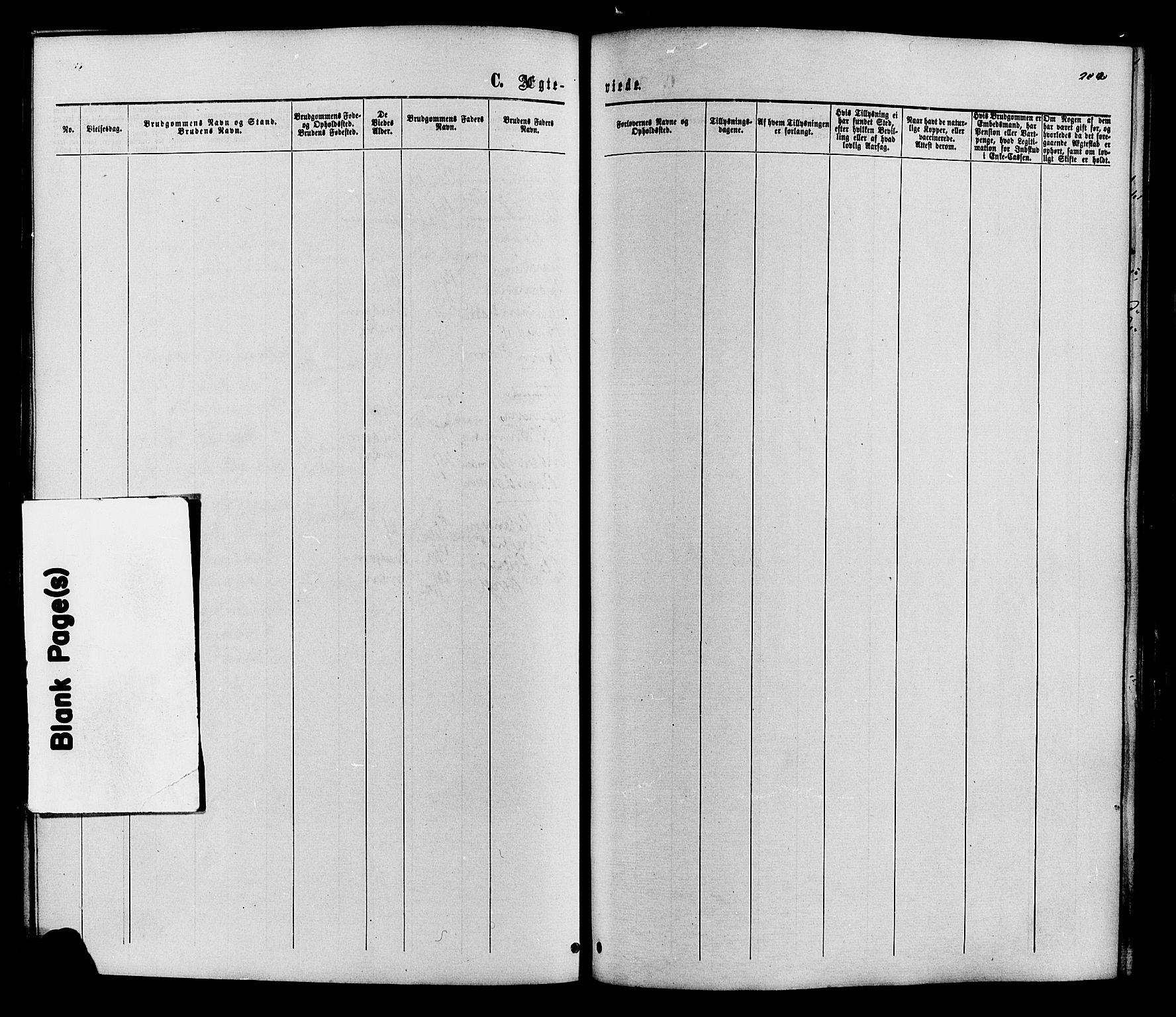 SAH, Vestre Slidre prestekontor, Ministerialbok nr. 3, 1865-1880, s. 202