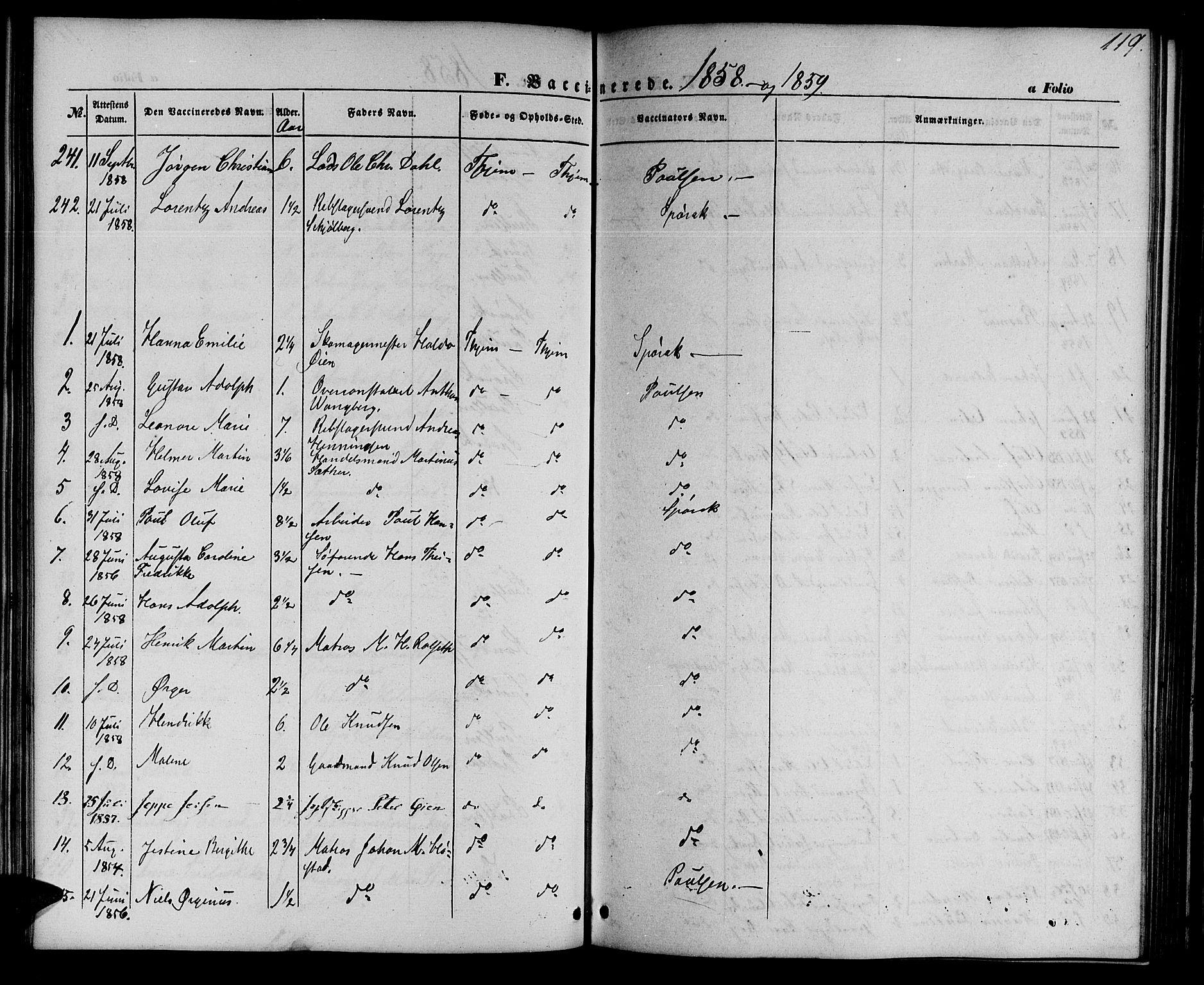 SAT, Ministerialprotokoller, klokkerbøker og fødselsregistre - Sør-Trøndelag, 602/L0113: Ministerialbok nr. 602A11, 1849-1861, s. 119