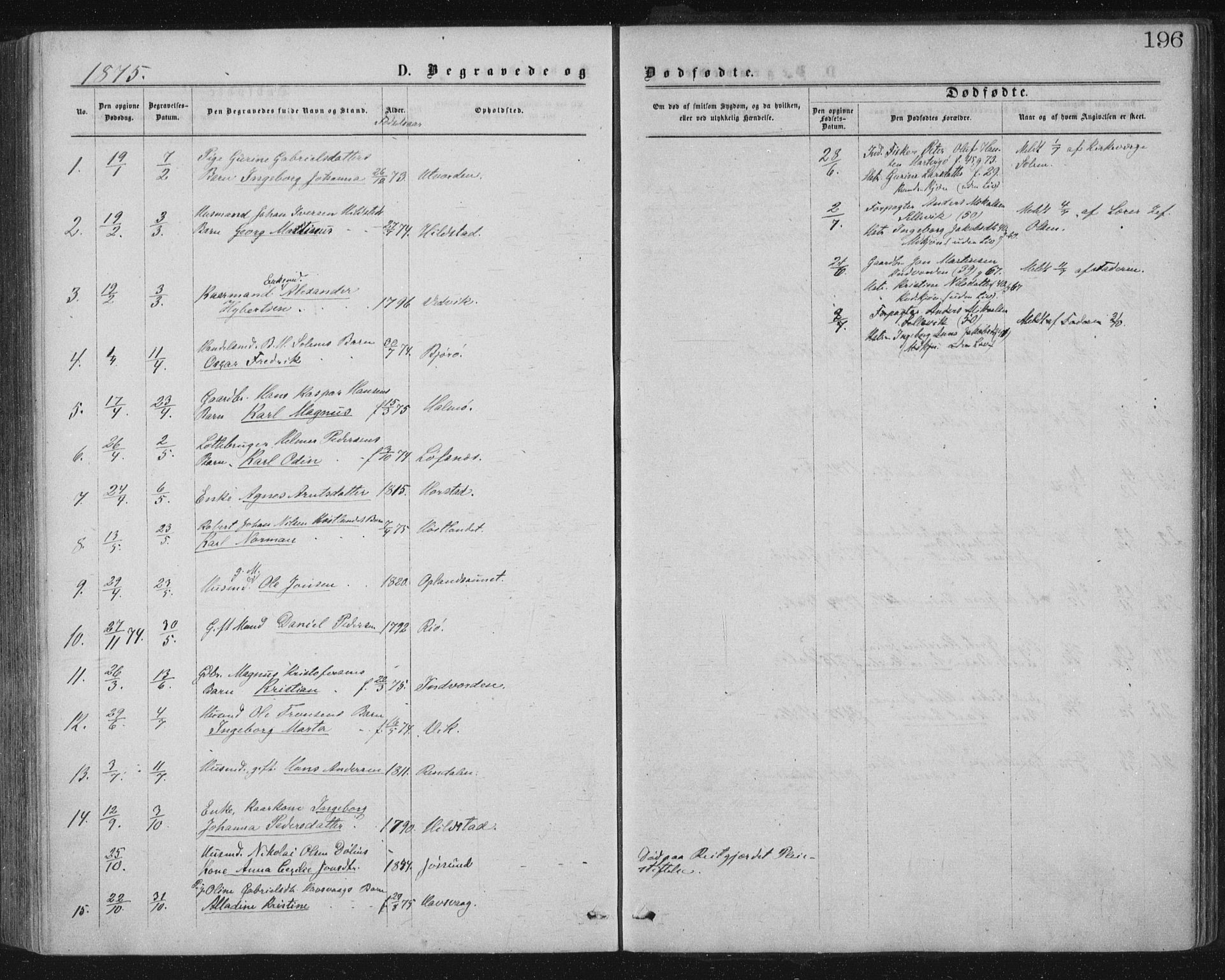 SAT, Ministerialprotokoller, klokkerbøker og fødselsregistre - Nord-Trøndelag, 771/L0596: Ministerialbok nr. 771A03, 1870-1884, s. 196