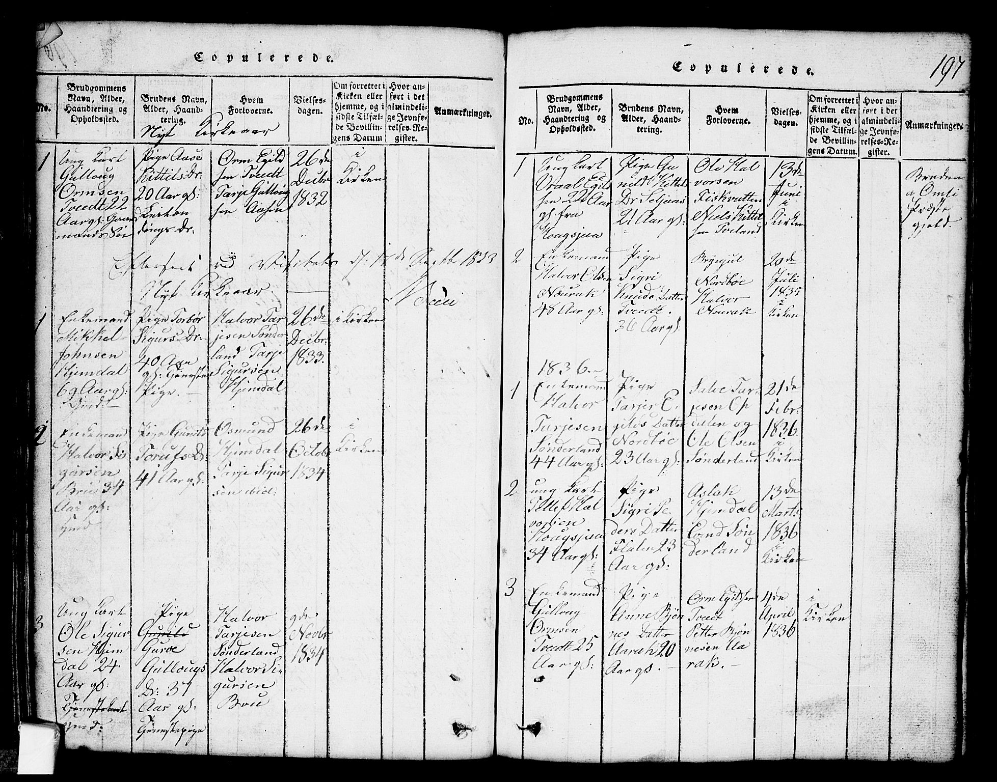 SAKO, Nissedal kirkebøker, G/Gb/L0001: Klokkerbok nr. II 1, 1814-1862, s. 197