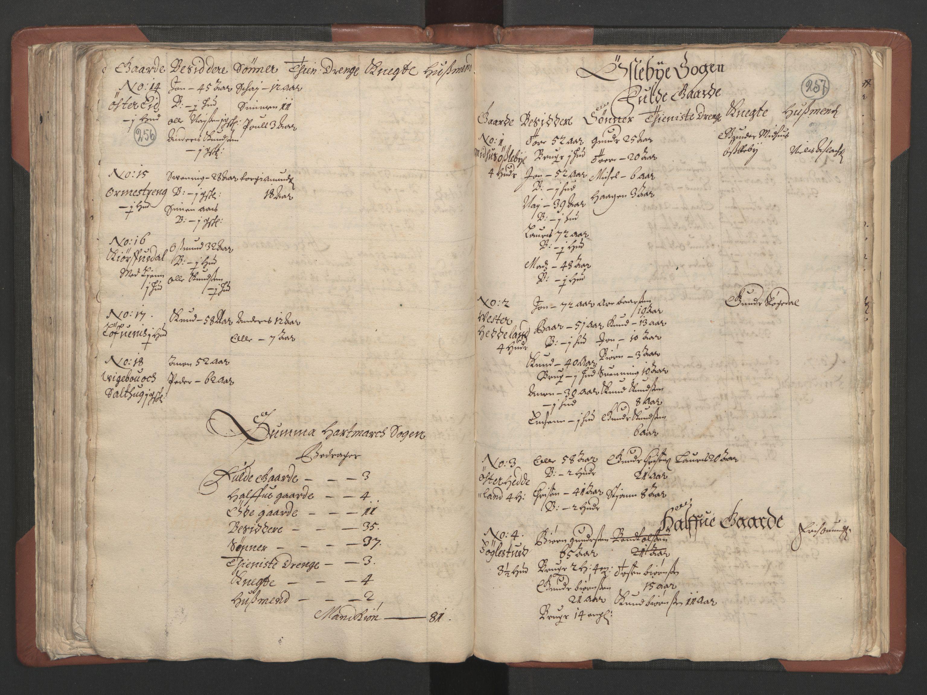 RA, Fogdenes og sorenskrivernes manntall 1664-1666, nr. 9: Mandal len, 1664-1666, s. 256-257