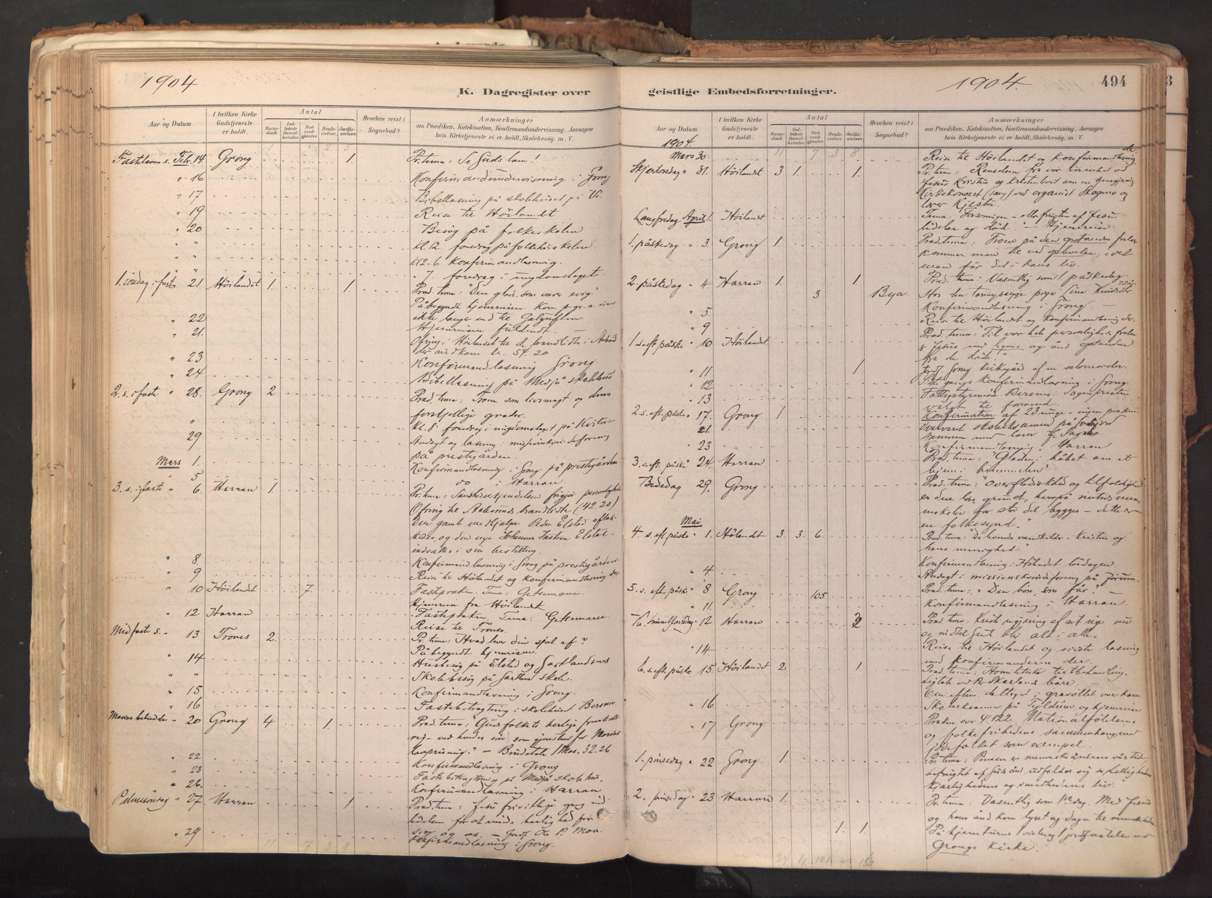 SAT, Ministerialprotokoller, klokkerbøker og fødselsregistre - Nord-Trøndelag, 758/L0519: Ministerialbok nr. 758A04, 1880-1926, s. 494