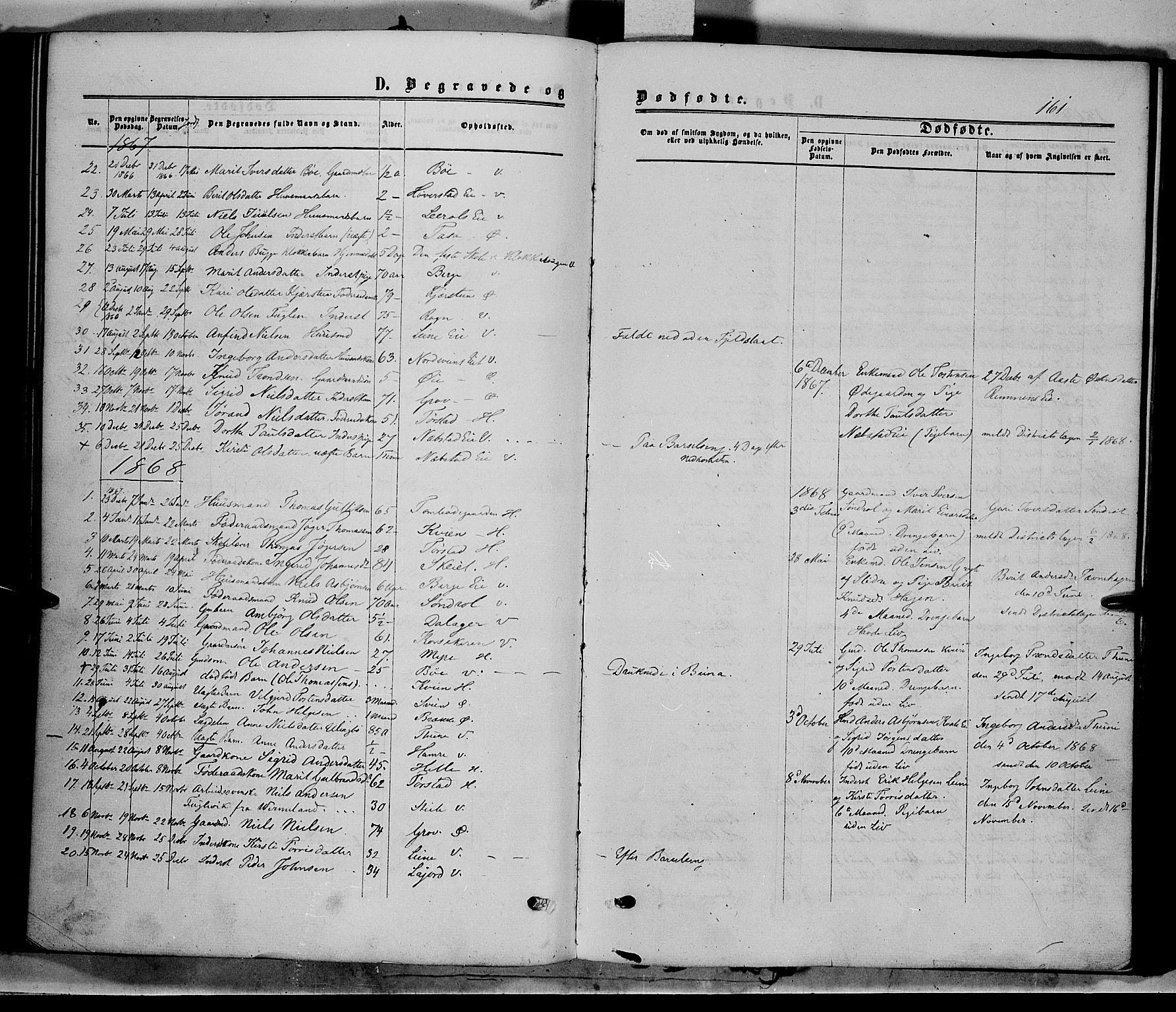 SAH, Vang prestekontor, Valdres, Ministerialbok nr. 7, 1865-1881, s. 161