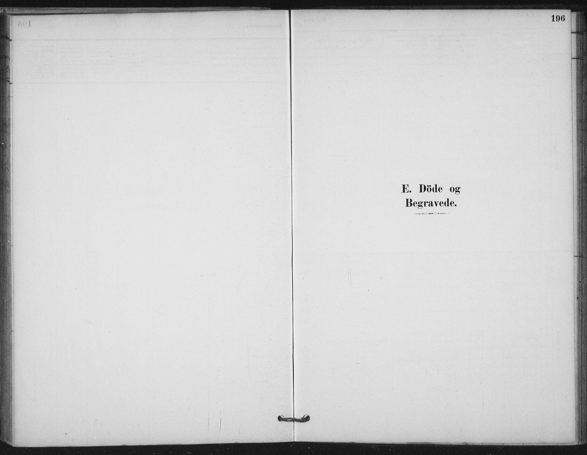 SAT, Ministerialprotokoller, klokkerbøker og fødselsregistre - Nord-Trøndelag, 710/L0095: Ministerialbok nr. 710A01, 1880-1914, s. 196