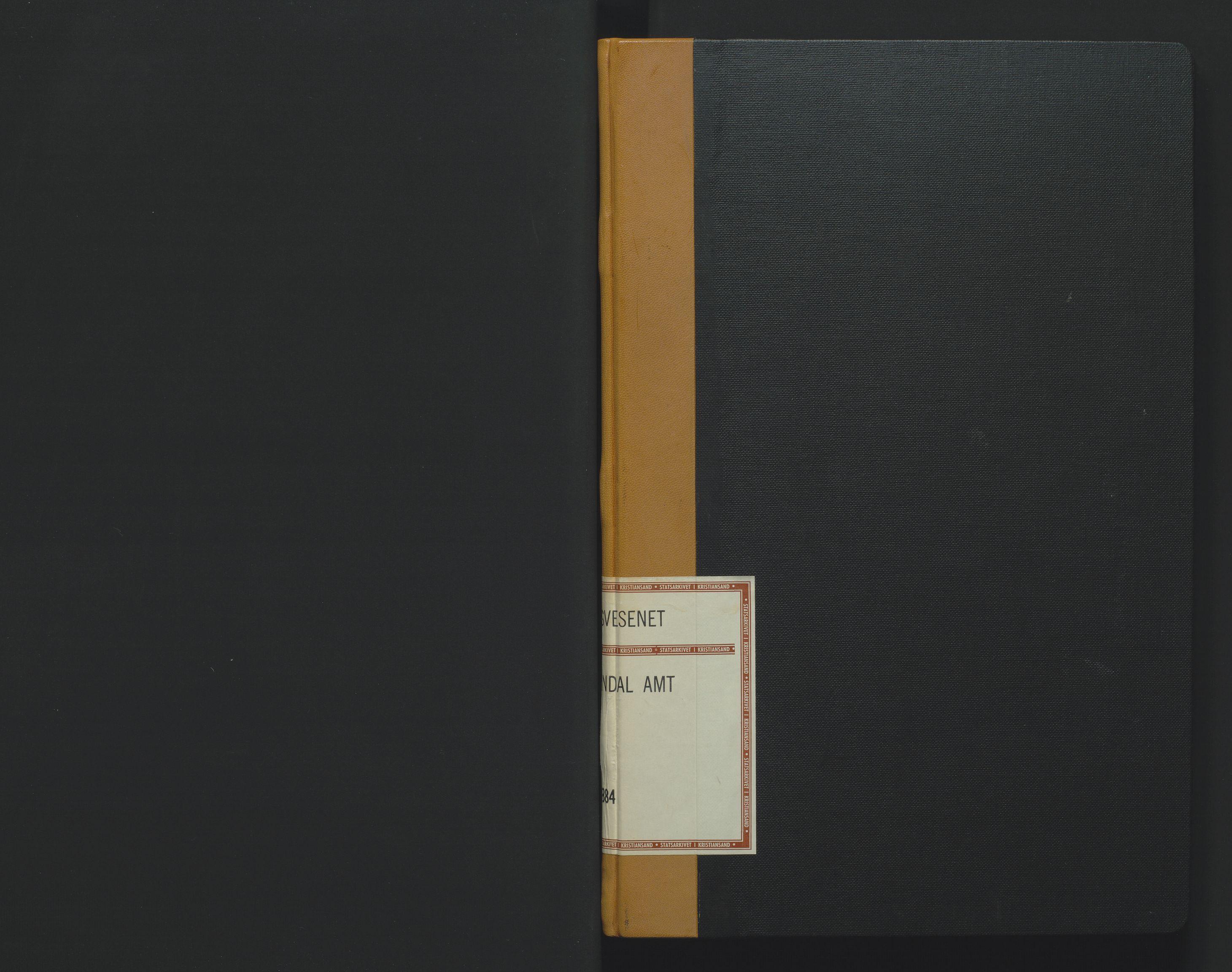 SAK, Utskiftningsformannen i Lister og Mandal amt, F/Fa/Faa/L0008: Utskiftningsprotokoll med register nr 8, 1864-1884