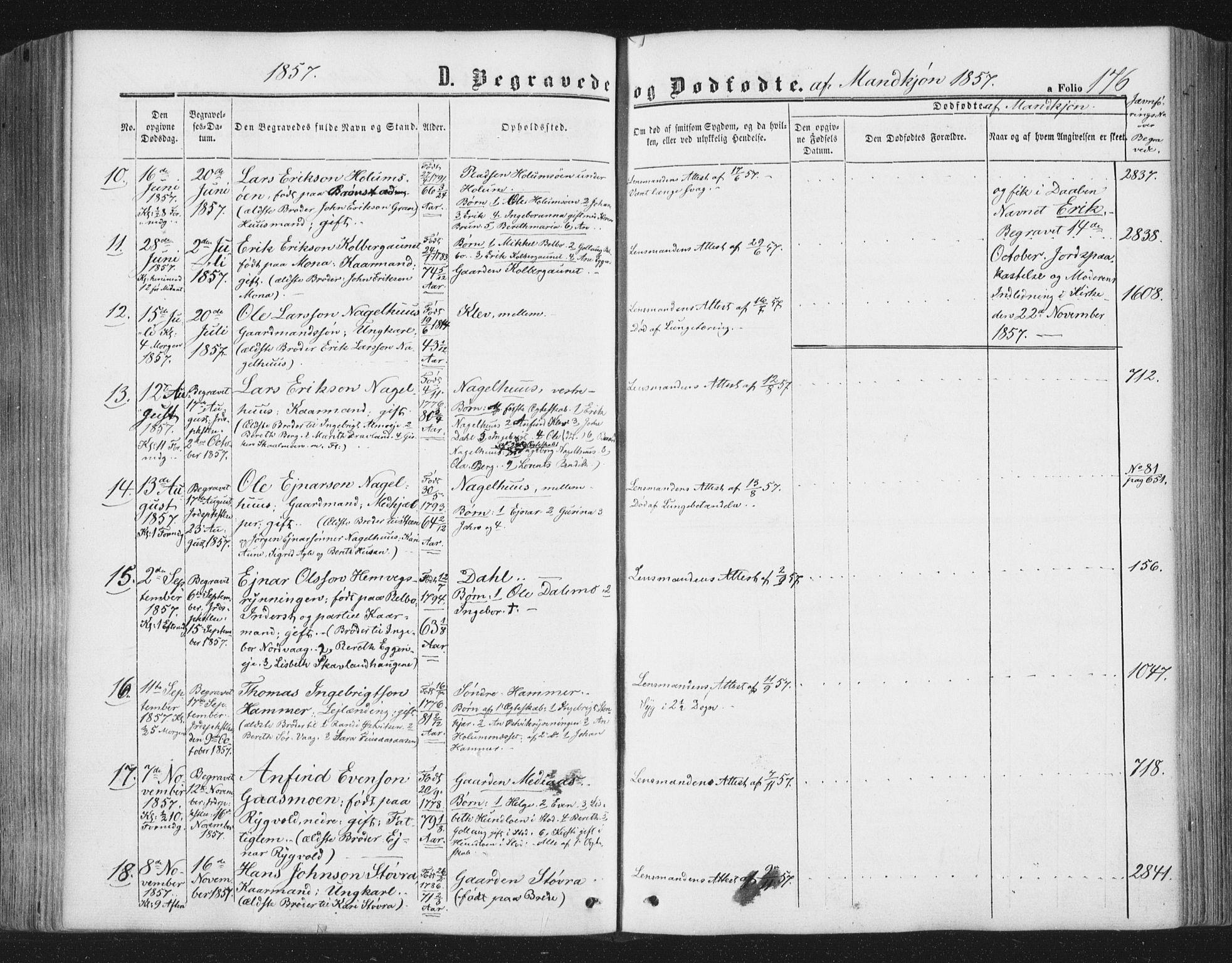 SAT, Ministerialprotokoller, klokkerbøker og fødselsregistre - Nord-Trøndelag, 749/L0472: Ministerialbok nr. 749A06, 1857-1873, s. 176