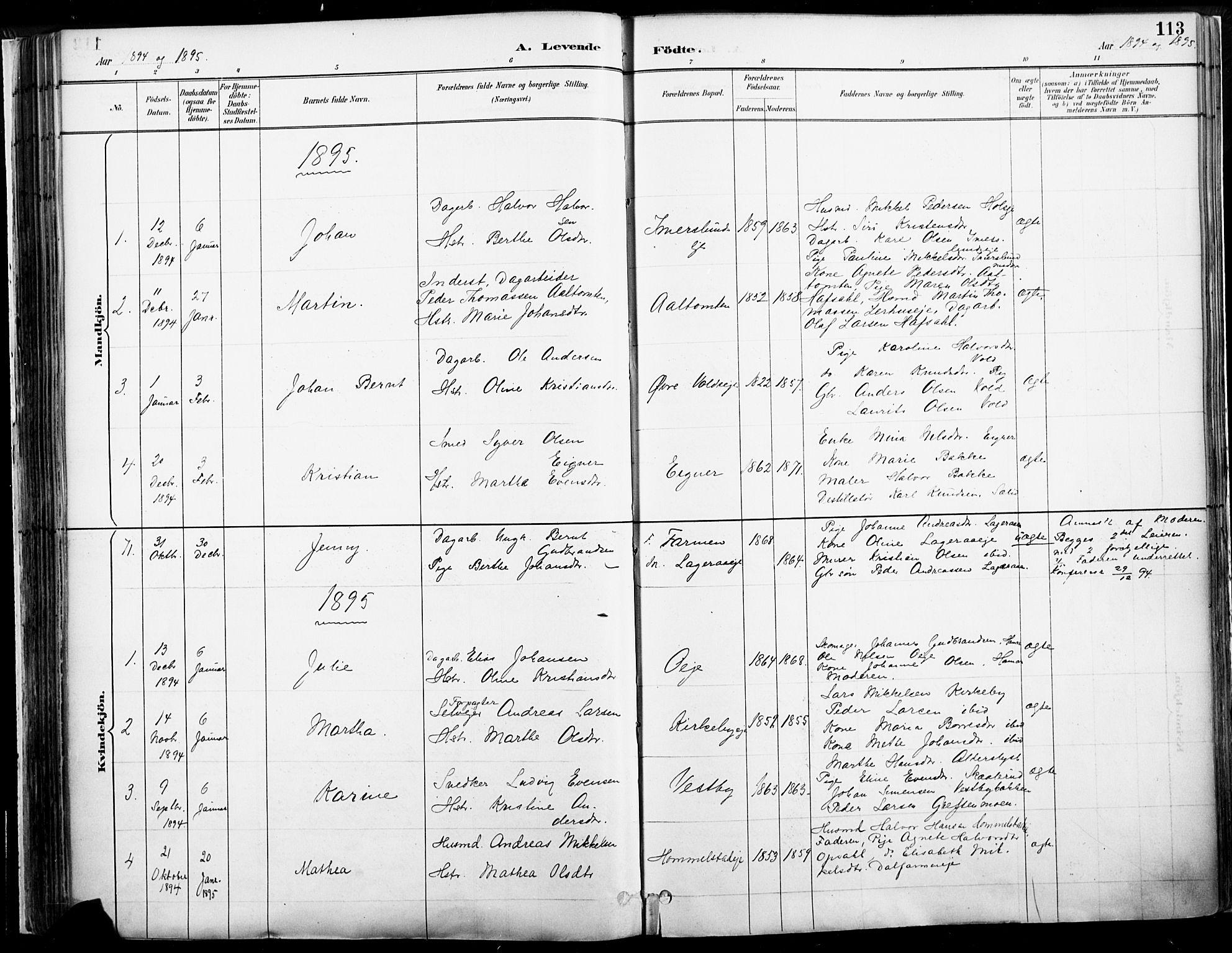 SAH, Vang prestekontor, Hedmark, H/Ha/Haa/L0019B: Ministerialbok nr. 19, 1886-1900, s. 113