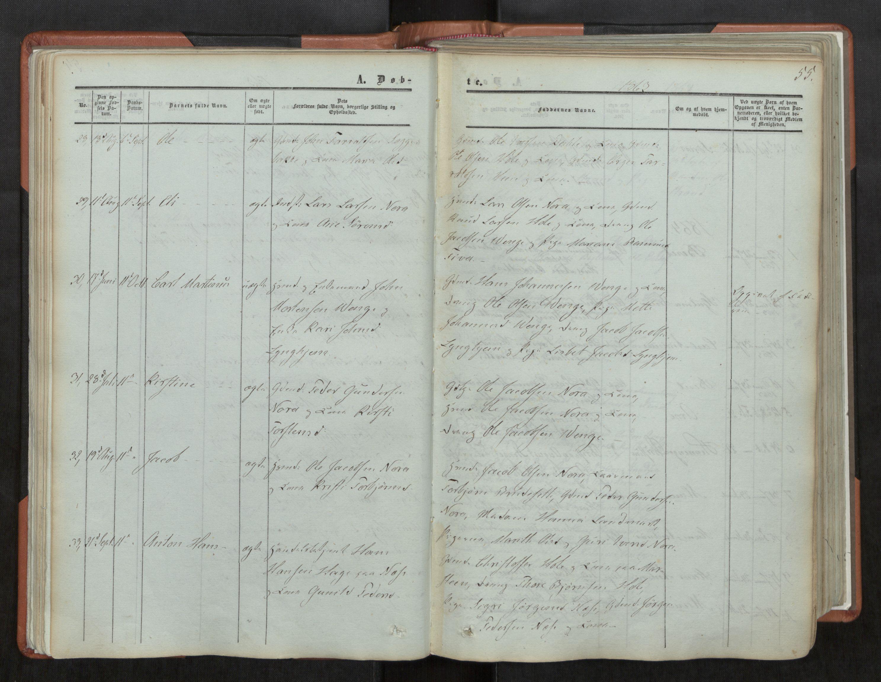 SAT, Ministerialprotokoller, klokkerbøker og fødselsregistre - Møre og Romsdal, 544/L0572: Ministerialbok nr. 544A05, 1854-1886, s. 55