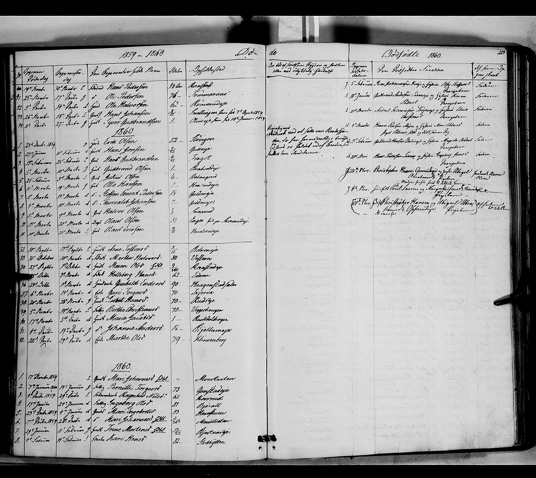 SAH, Jevnaker prestekontor, Ministerialbok nr. 7, 1858-1876, s. 223