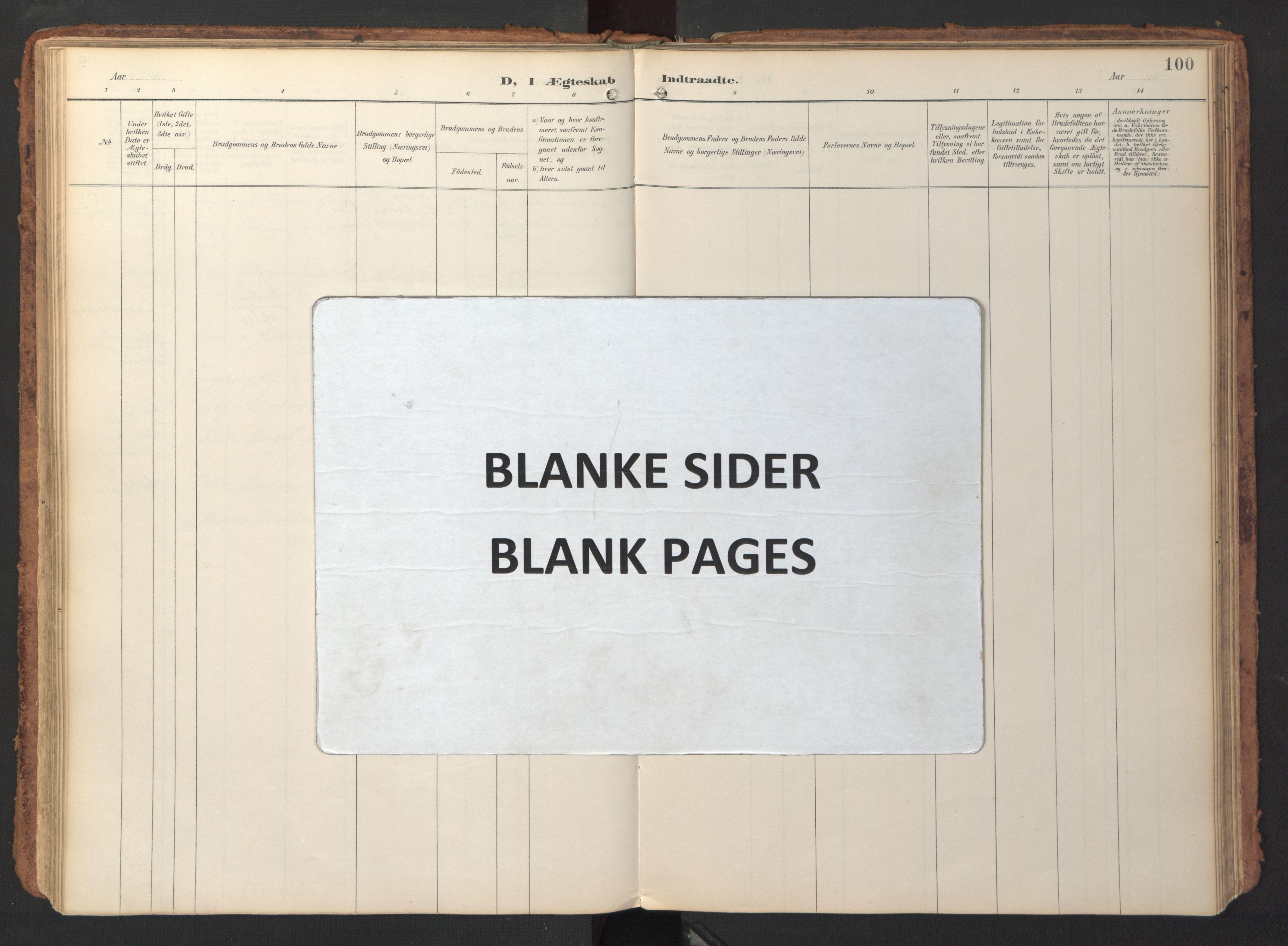 SAT, Ministerialprotokoller, klokkerbøker og fødselsregistre - Sør-Trøndelag, 690/L1050: Ministerialbok nr. 690A01, 1889-1929, s. 100