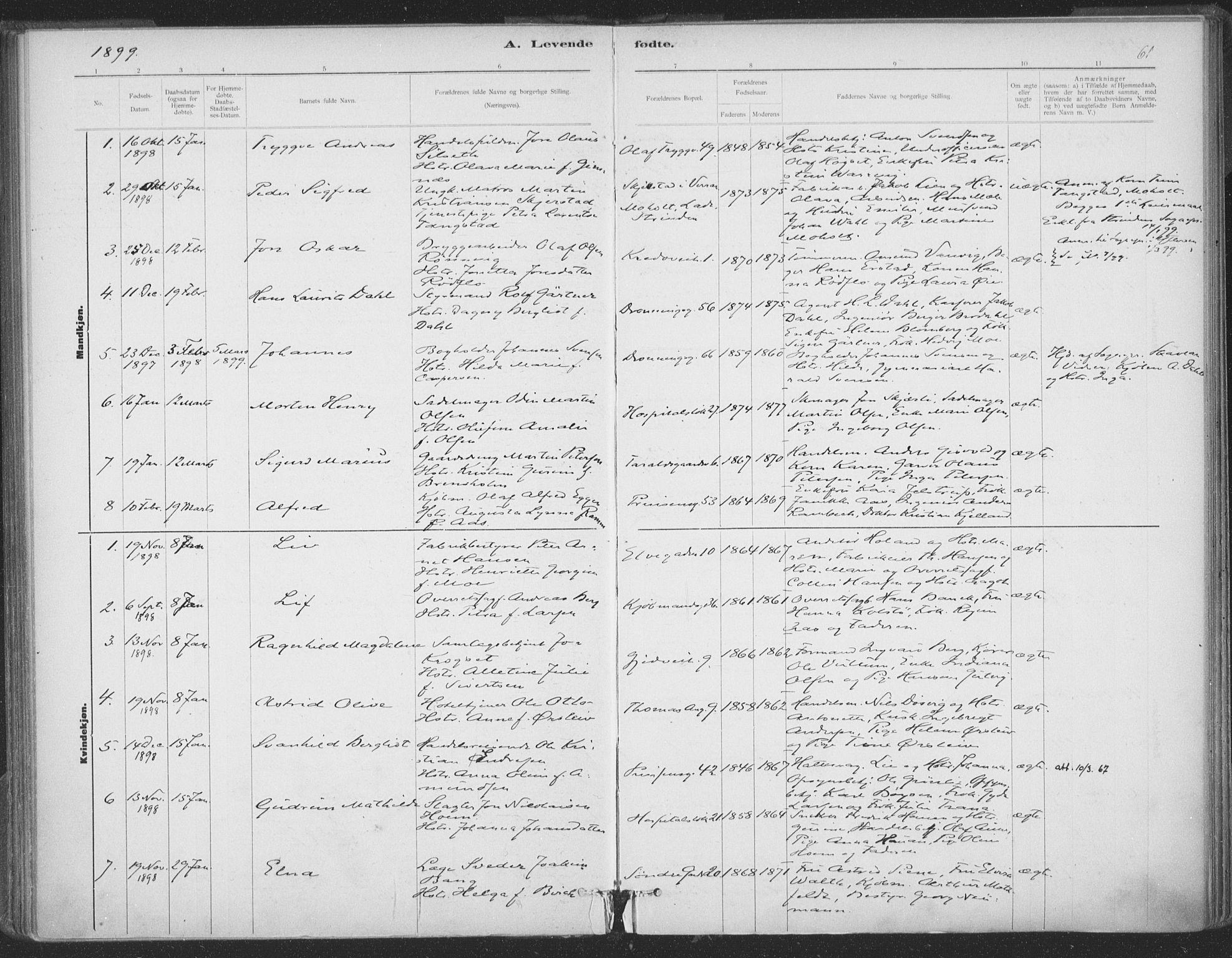 SAT, Ministerialprotokoller, klokkerbøker og fødselsregistre - Sør-Trøndelag, 602/L0122: Ministerialbok nr. 602A20, 1892-1908, s. 61