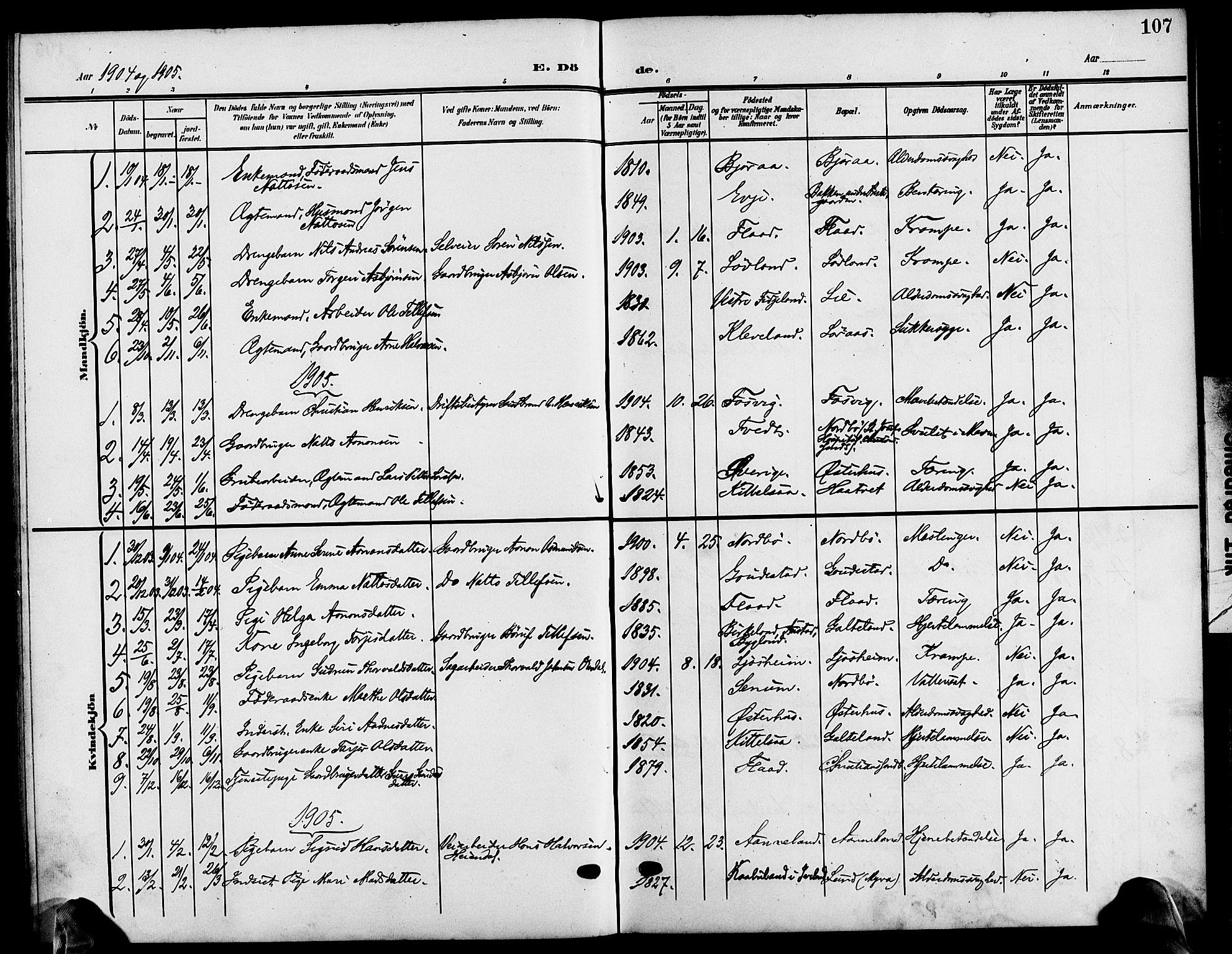 SAK, Evje sokneprestkontor, F/Fb/Fba/L0004: Klokkerbok nr. B 4, 1899-1914, s. 107