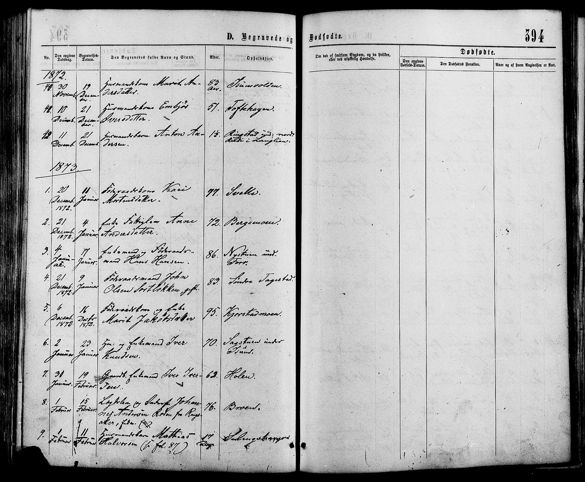 SAH, Sør-Fron prestekontor, H/Ha/Haa/L0002: Ministerialbok nr. 2, 1864-1880, s. 394