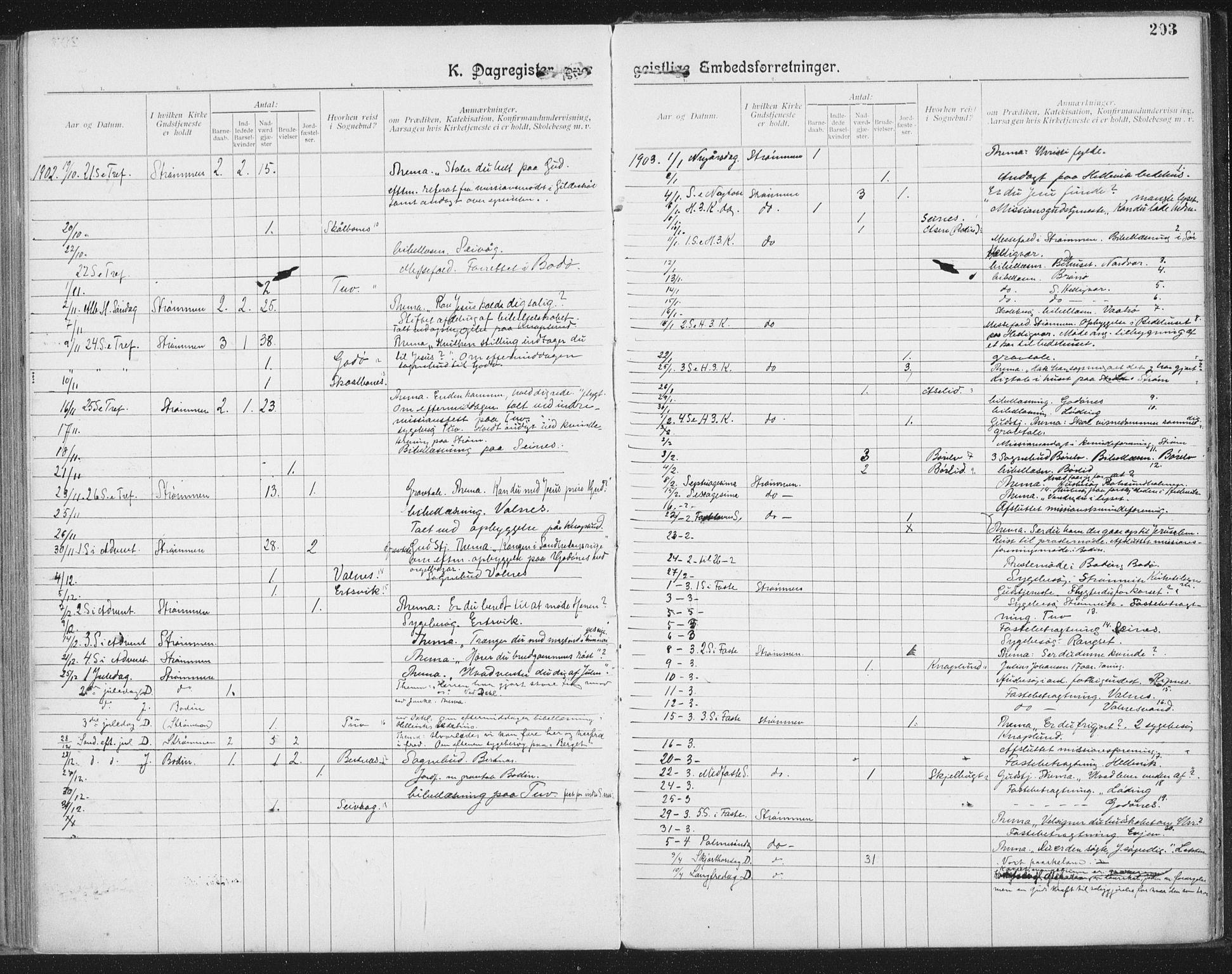 SAT, Ministerialprotokoller, klokkerbøker og fødselsregistre - Nordland, 804/L0081: Ministerialbok nr. 804A02, 1901-1915, s. 293