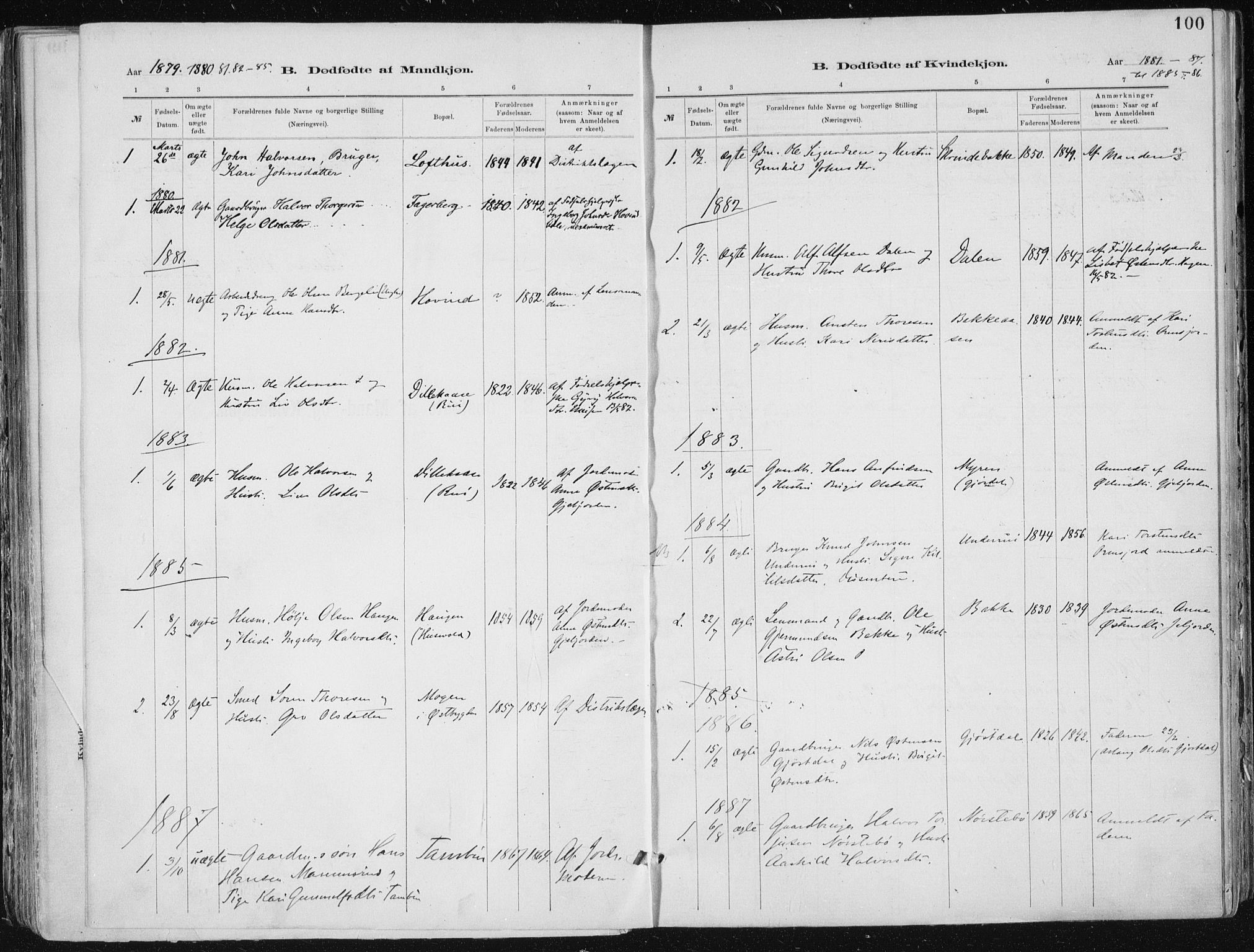 SAKO, Tinn kirkebøker, F/Fa/L0007: Ministerialbok nr. I 7, 1878-1922, s. 100