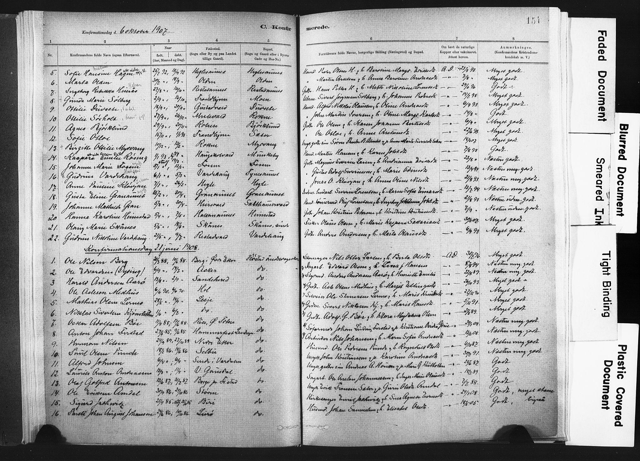 SAT, Ministerialprotokoller, klokkerbøker og fødselsregistre - Nord-Trøndelag, 721/L0207: Ministerialbok nr. 721A02, 1880-1911, s. 154
