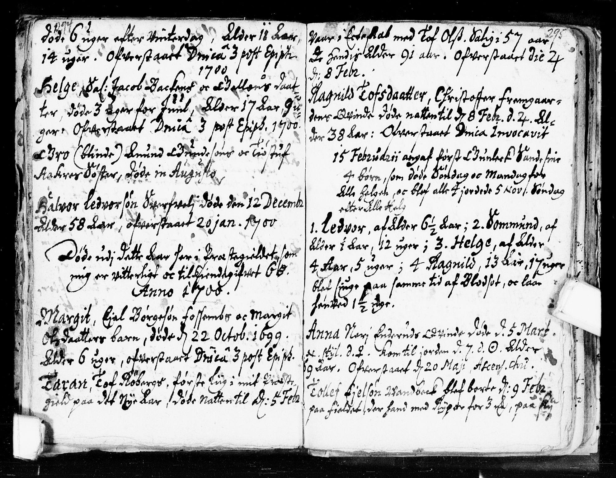 SAKO, Seljord kirkebøker, F/Fa/L0002: Ministerialbok nr. I 2, 1689-1713, s. 294-295