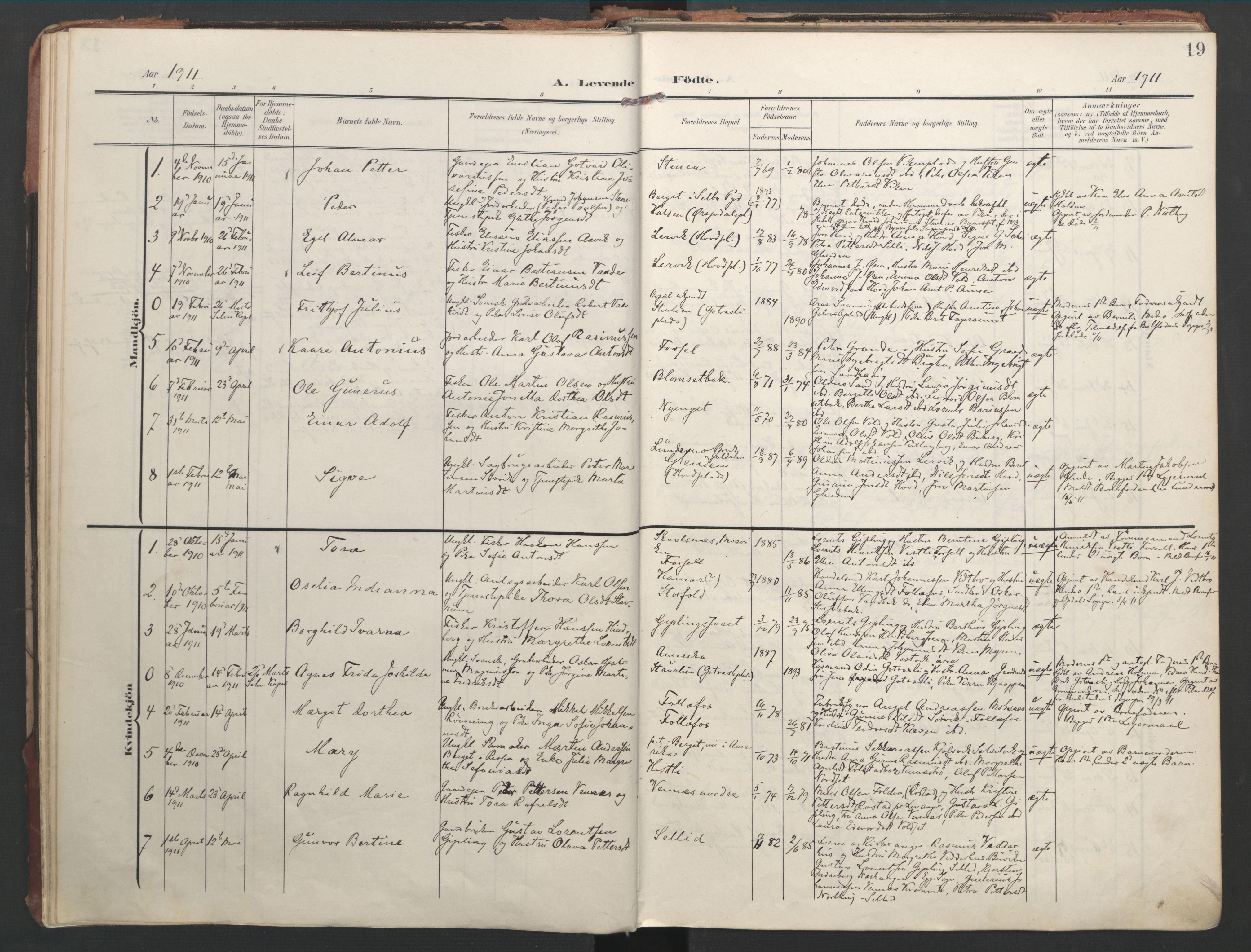 SAT, Ministerialprotokoller, klokkerbøker og fødselsregistre - Nord-Trøndelag, 744/L0421: Ministerialbok nr. 744A05, 1905-1930, s. 19