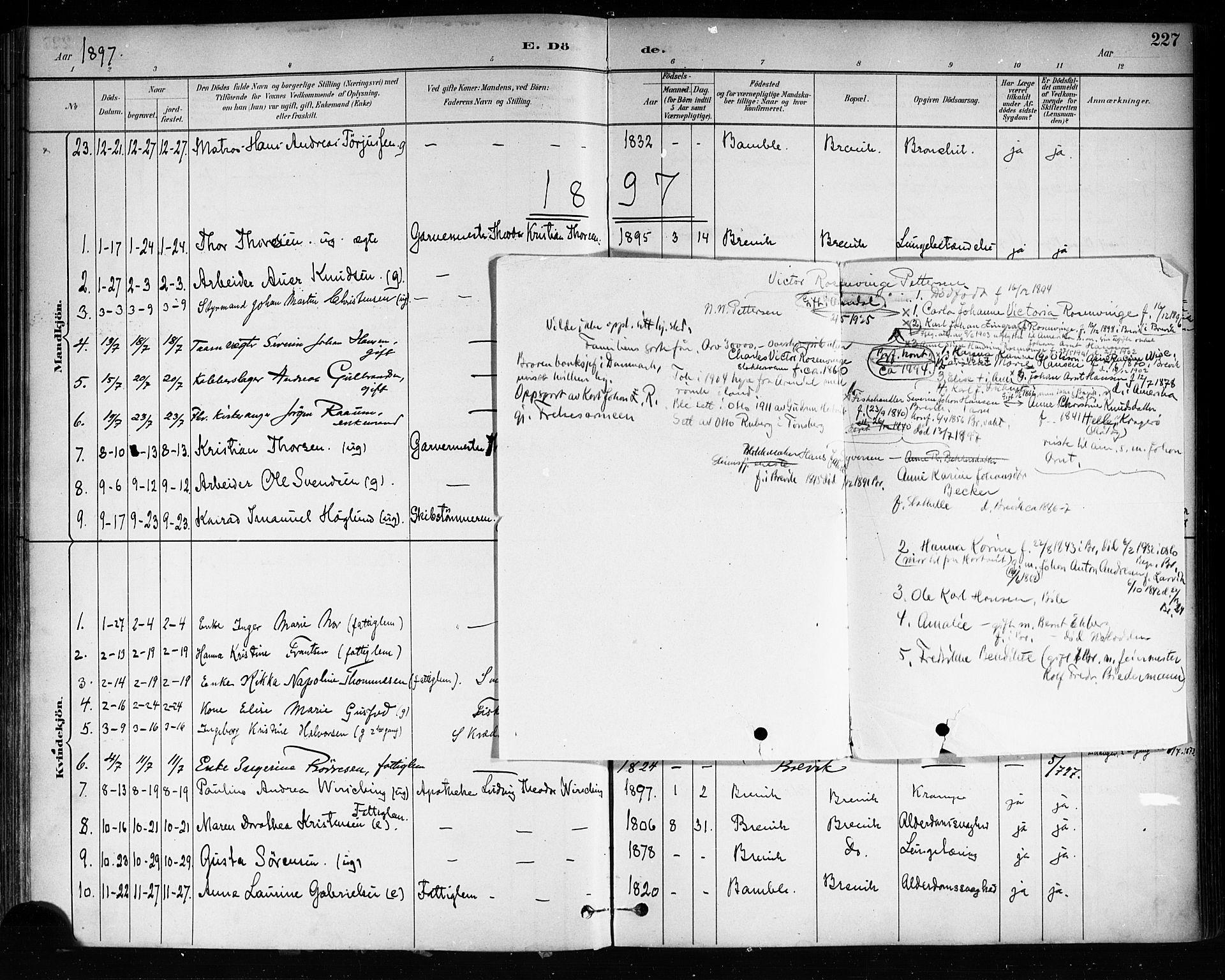 SAKO, Brevik kirkebøker, F/Fa/L0007: Ministerialbok nr. 7, 1882-1900, s. 227