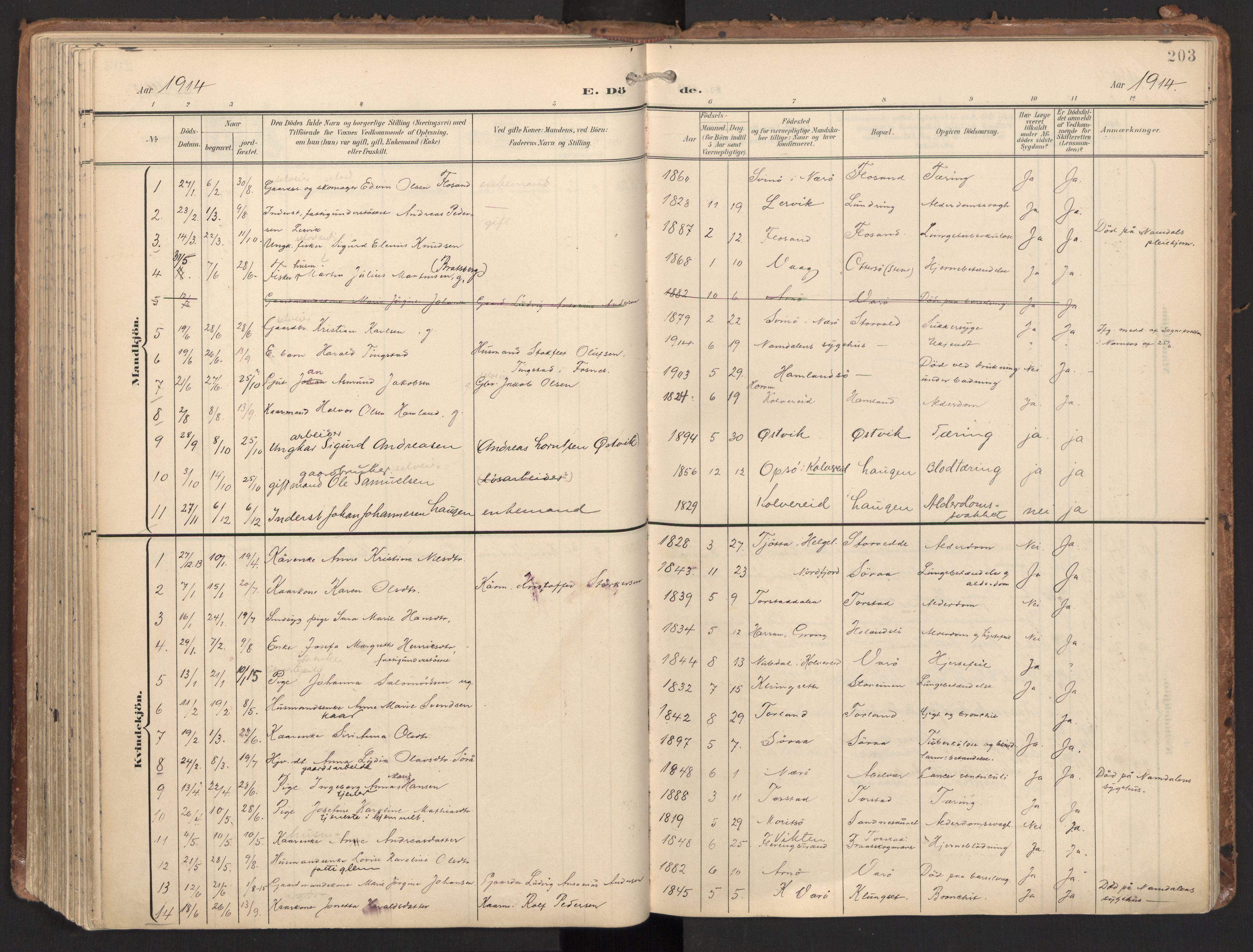 SAT, Ministerialprotokoller, klokkerbøker og fødselsregistre - Nord-Trøndelag, 784/L0677: Ministerialbok nr. 784A12, 1900-1920, s. 203