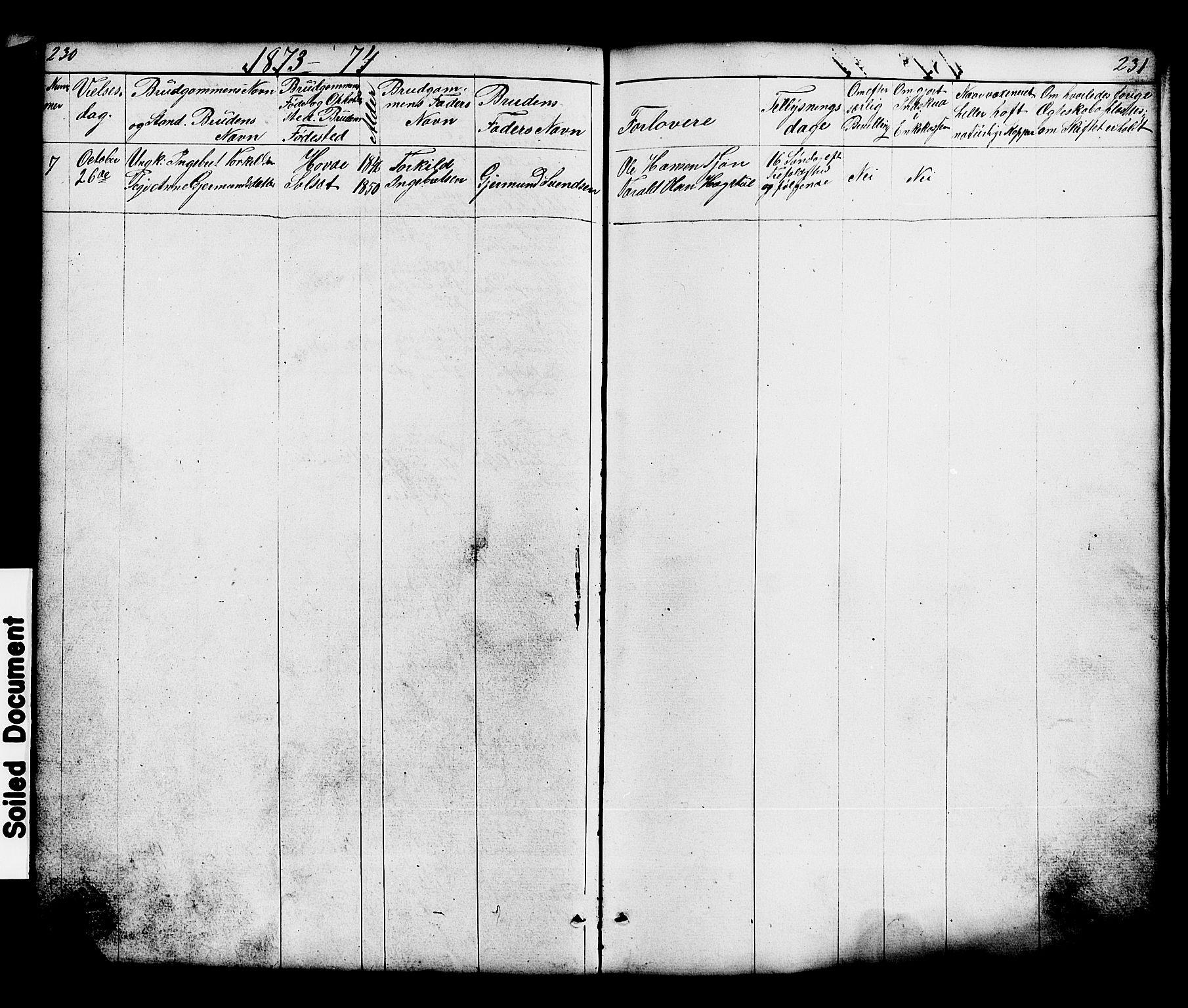 SAKO, Hjartdal kirkebøker, G/Gc/L0002: Klokkerbok nr. III 2, 1854-1890, s. 230-231