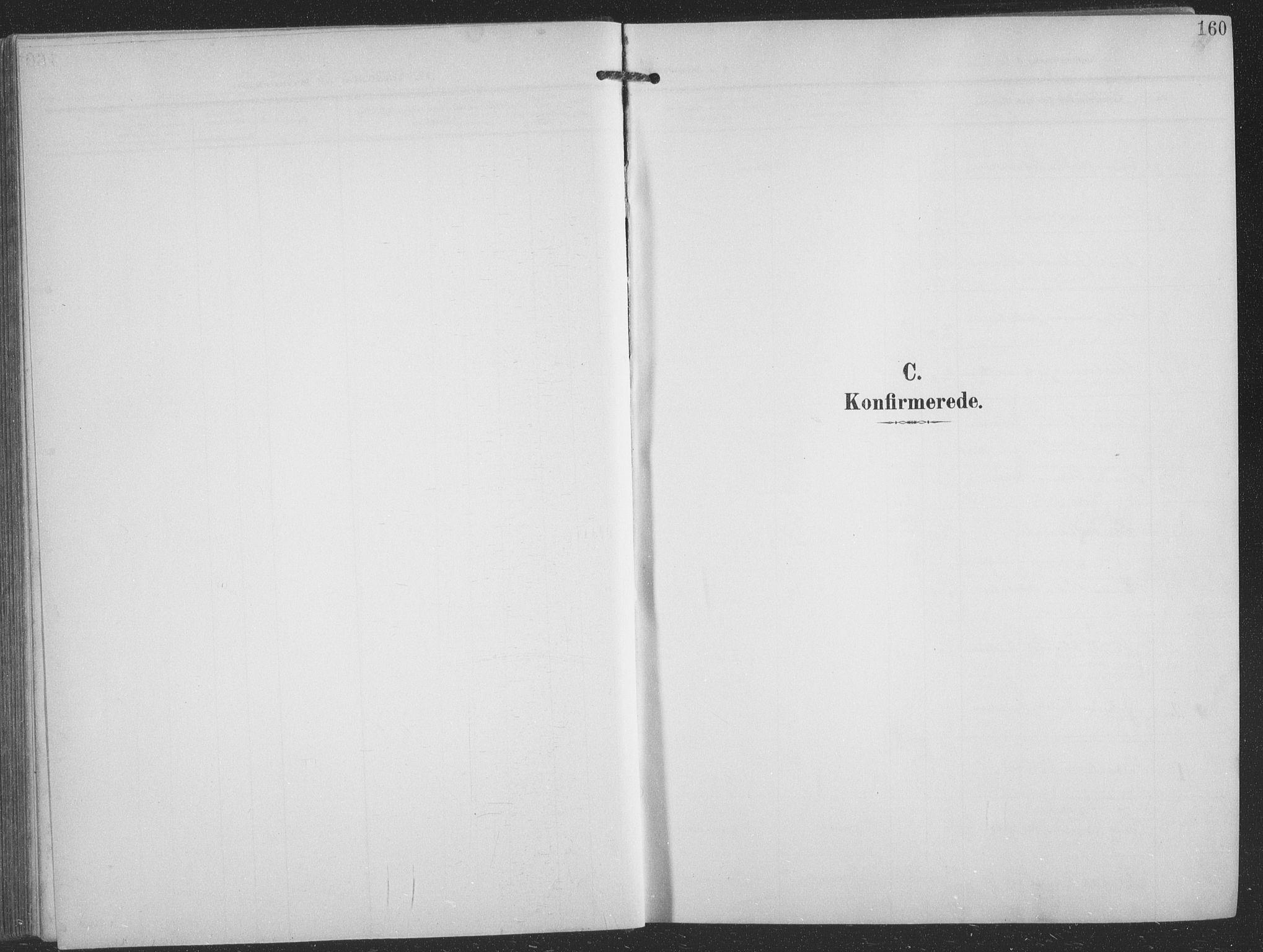 SATØ, Balsfjord sokneprestembete, Klokkerbok nr. 9, 1906-1920, s. 160