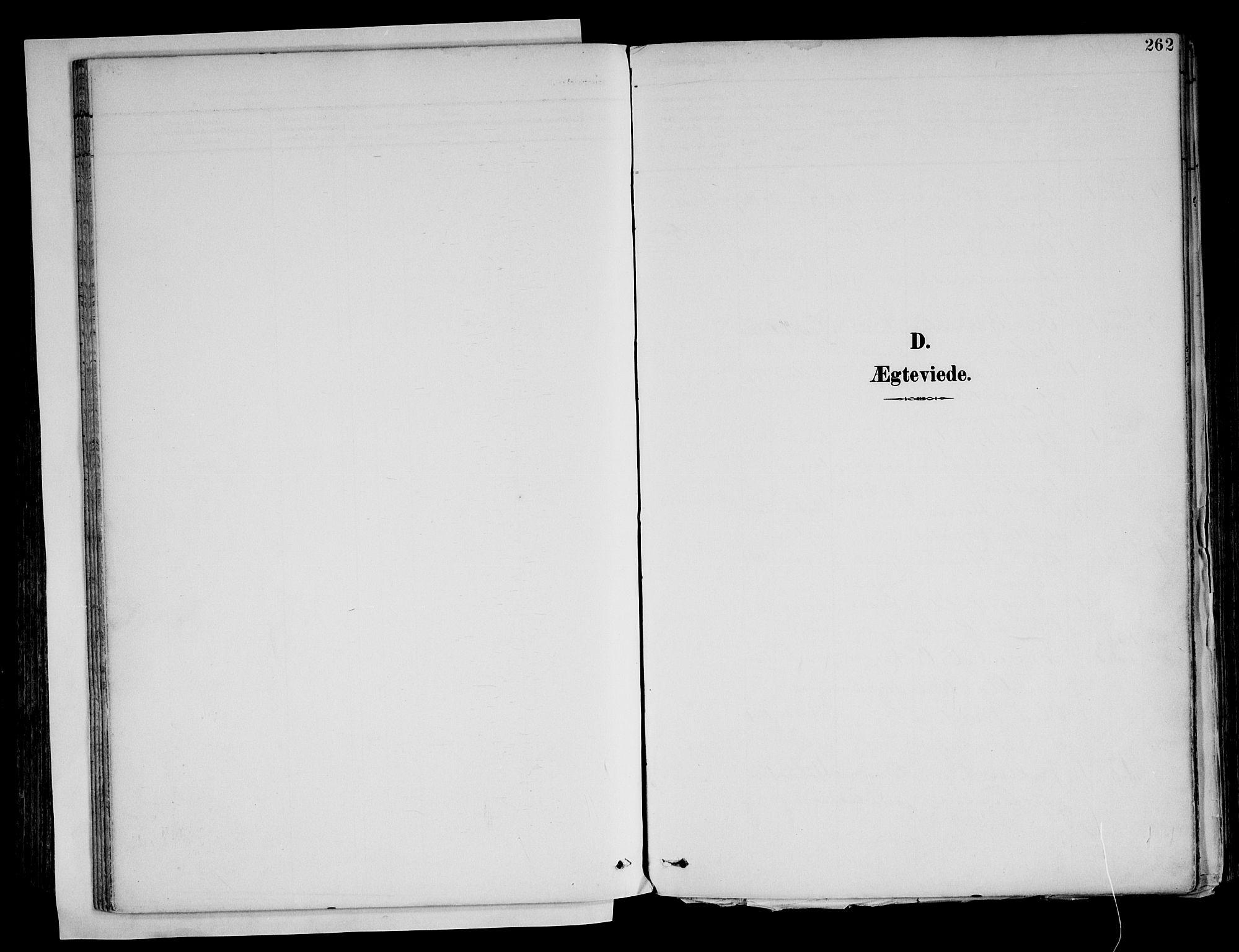 SAH, Brandval prestekontor, H/Ha/Haa/L0003: Ministerialbok nr. 3, 1894-1909, s. 262