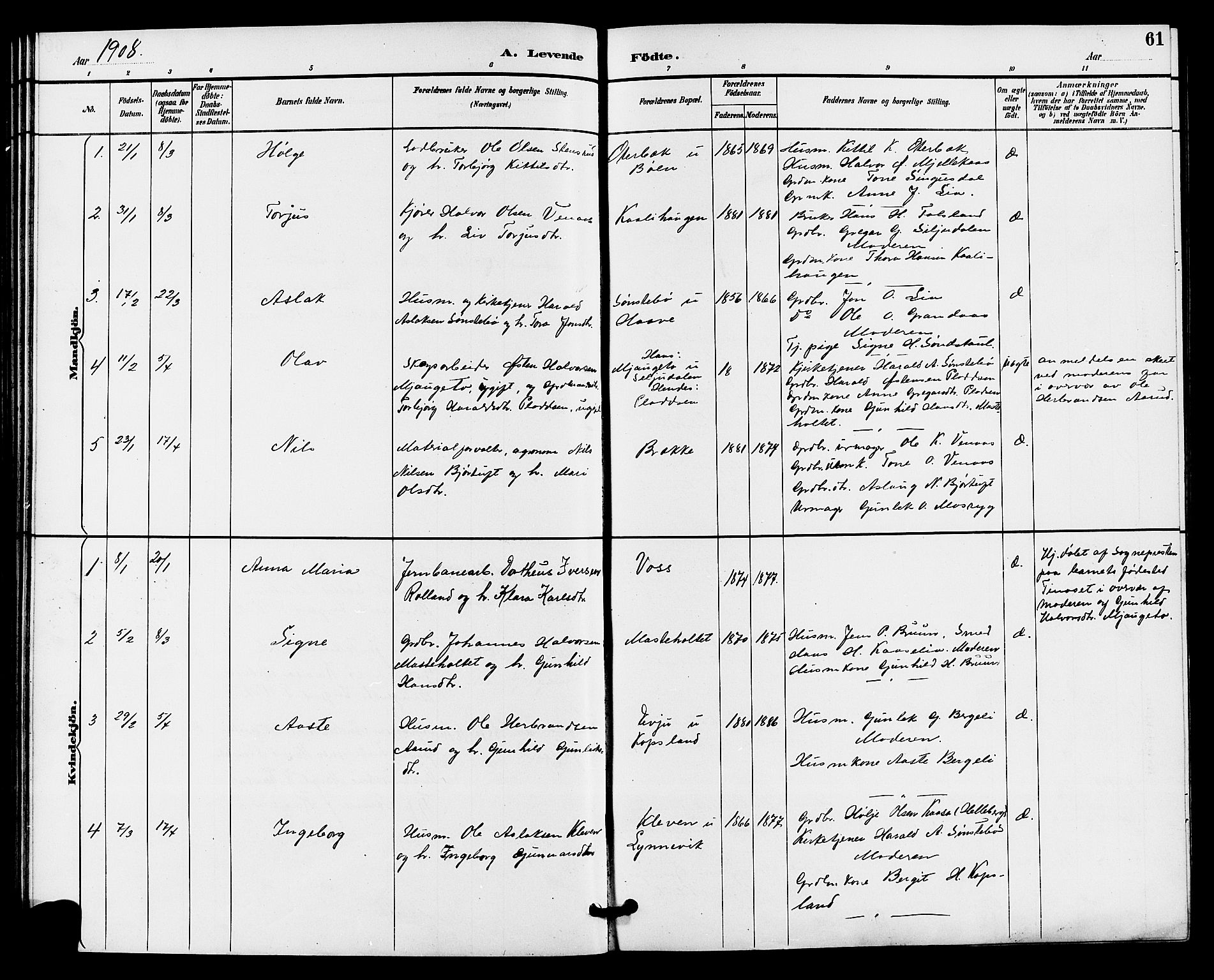 SAKO, Gransherad kirkebøker, G/Ga/L0003: Klokkerbok nr. I 3, 1887-1915, s. 61