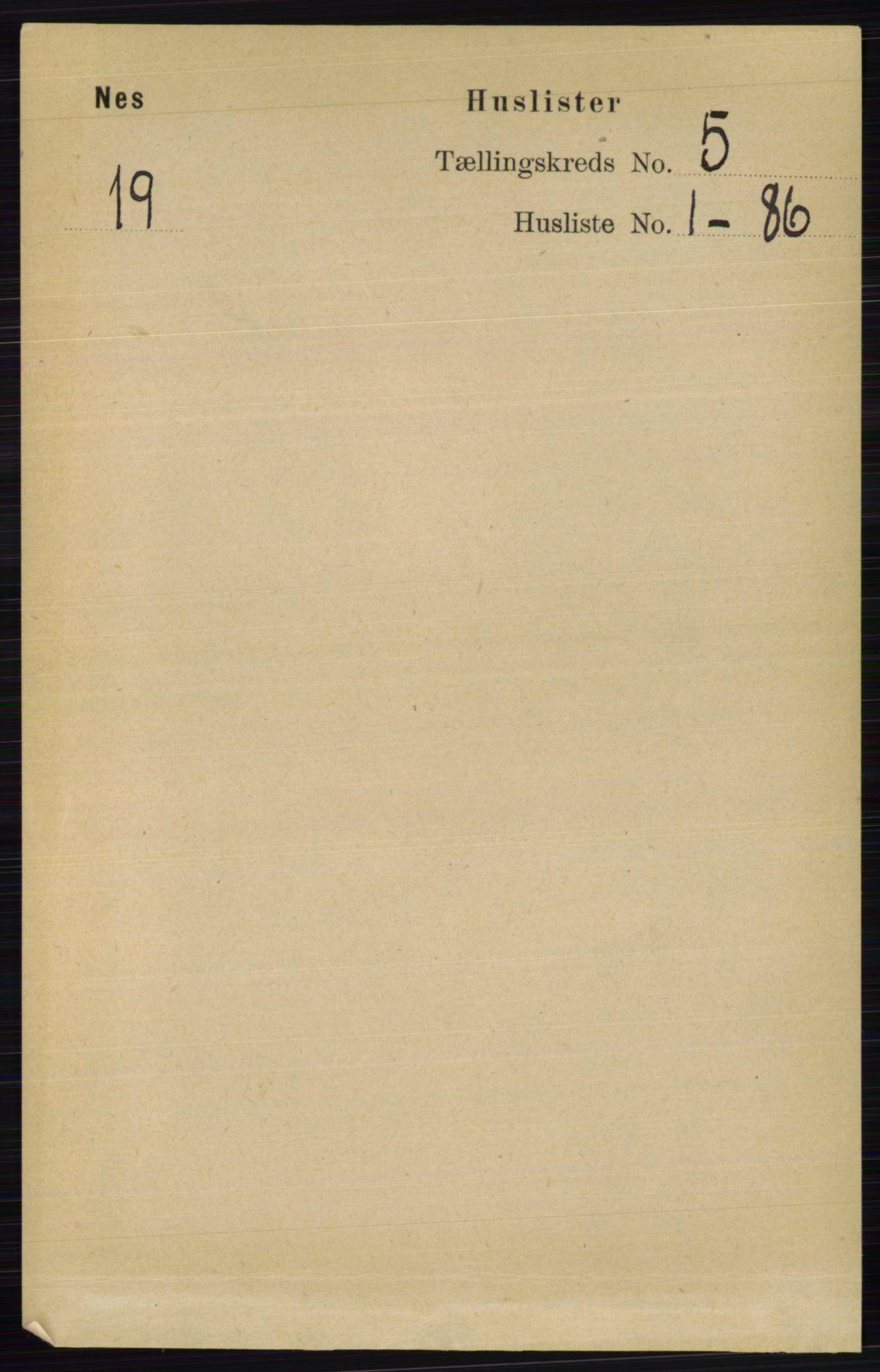 RA, Folketelling 1891 for 0411 Nes herred, 1891, s. 2520