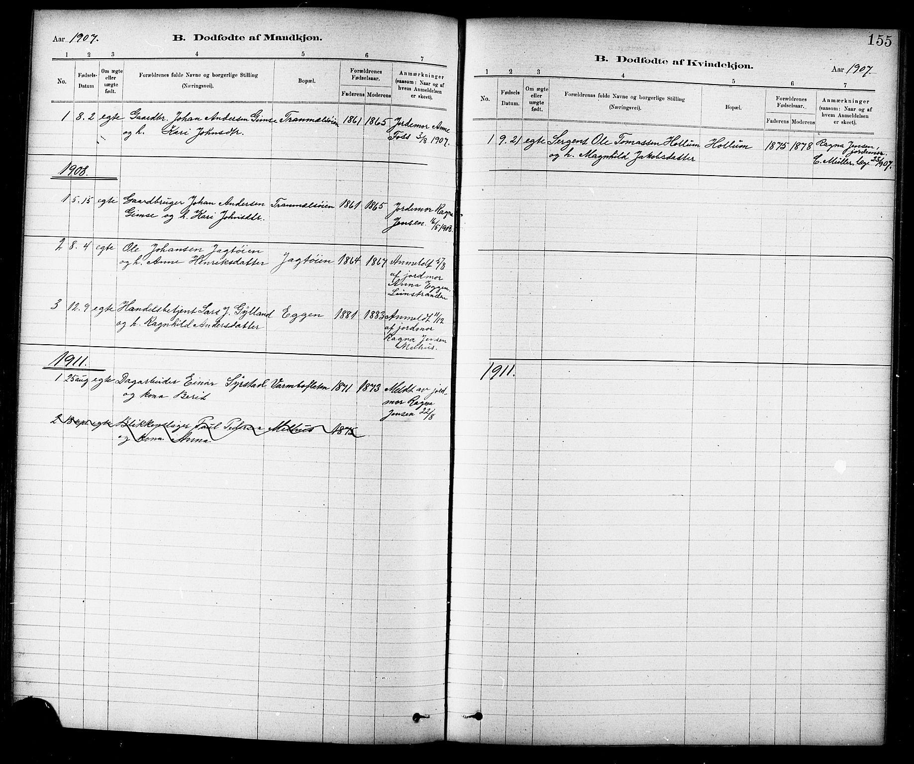 SAT, Ministerialprotokoller, klokkerbøker og fødselsregistre - Sør-Trøndelag, 691/L1094: Klokkerbok nr. 691C05, 1879-1911, s. 155