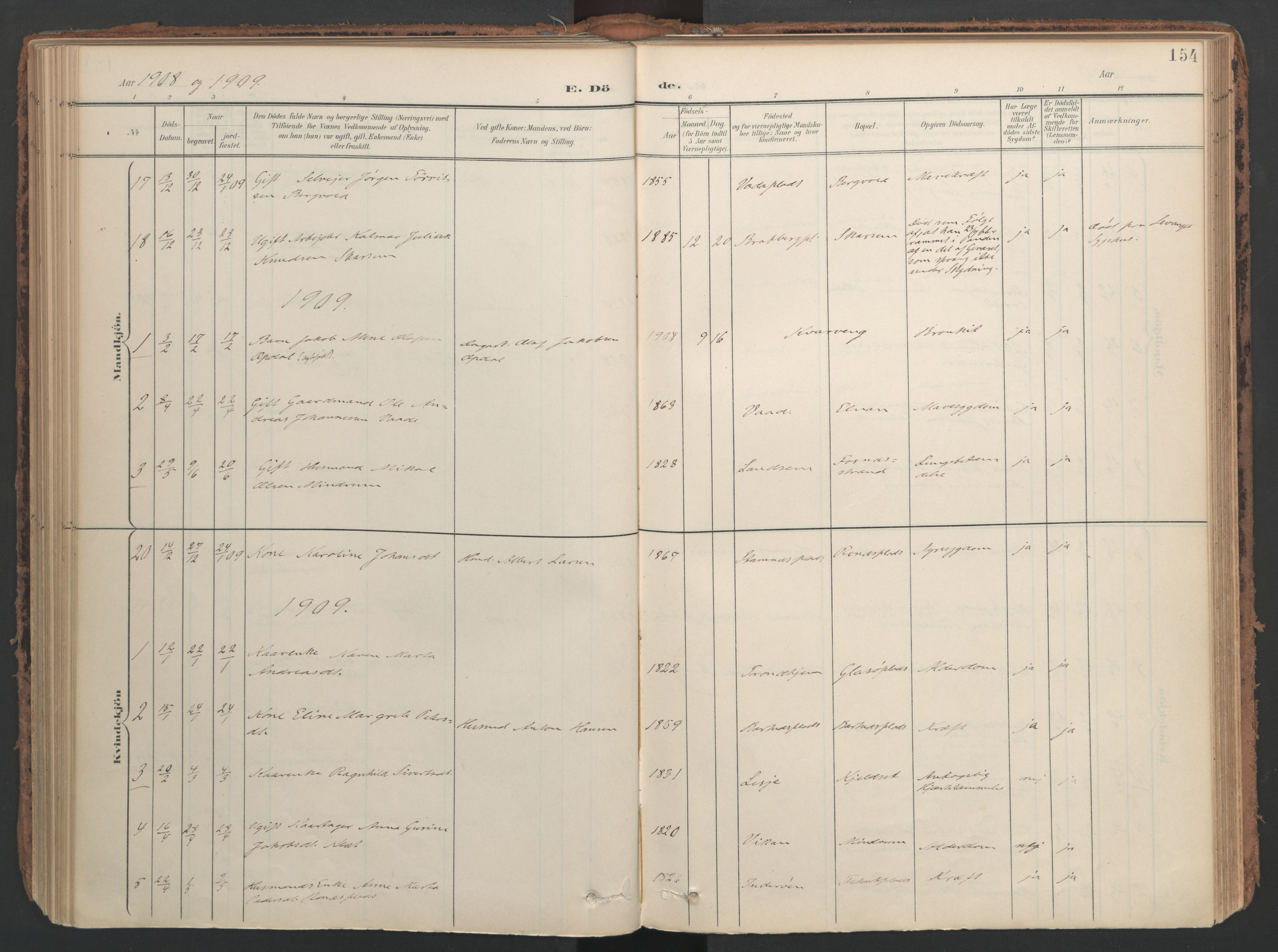 SAT, Ministerialprotokoller, klokkerbøker og fødselsregistre - Nord-Trøndelag, 741/L0397: Ministerialbok nr. 741A11, 1901-1911, s. 154