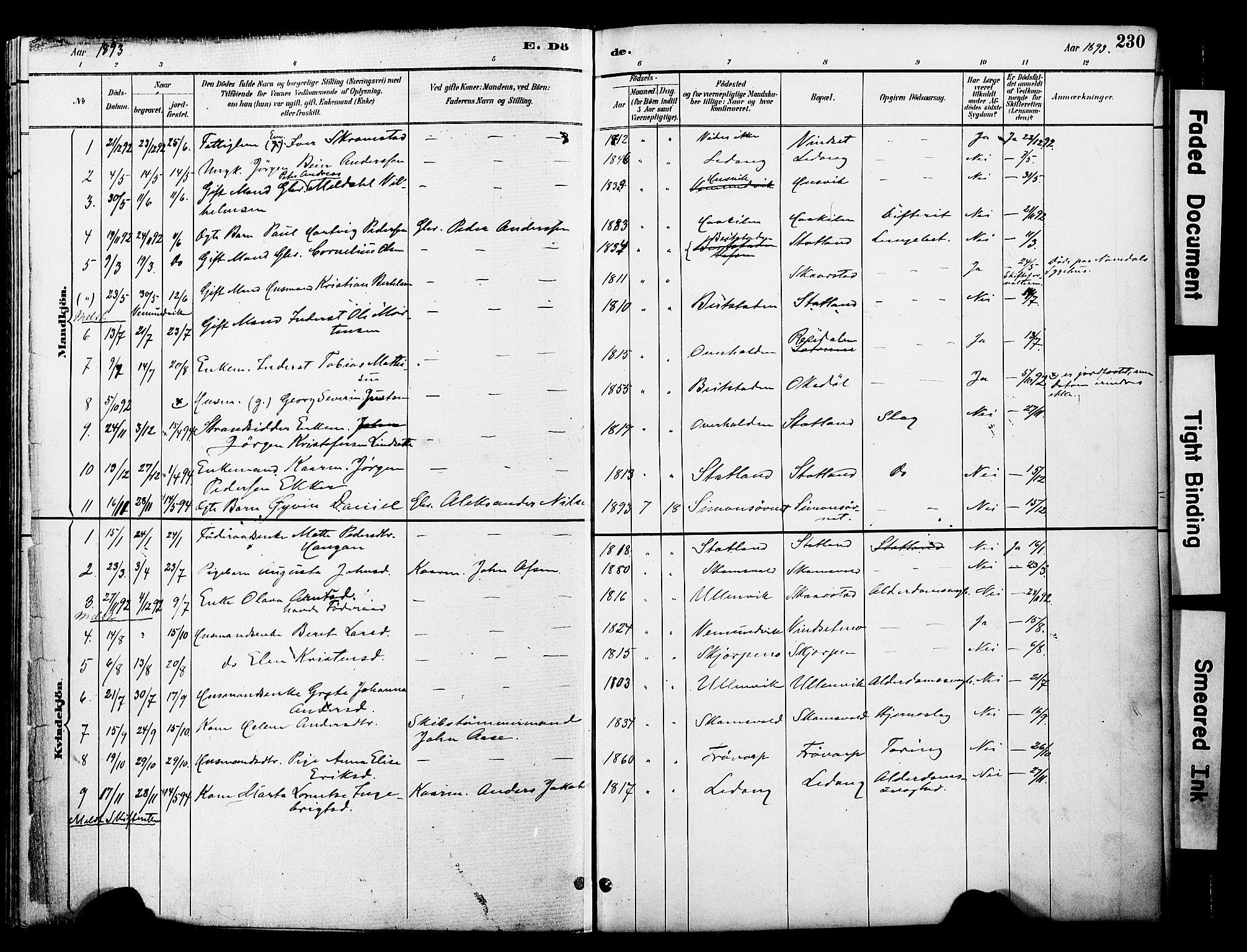 SAT, Ministerialprotokoller, klokkerbøker og fødselsregistre - Nord-Trøndelag, 774/L0628: Ministerialbok nr. 774A02, 1887-1903, s. 230