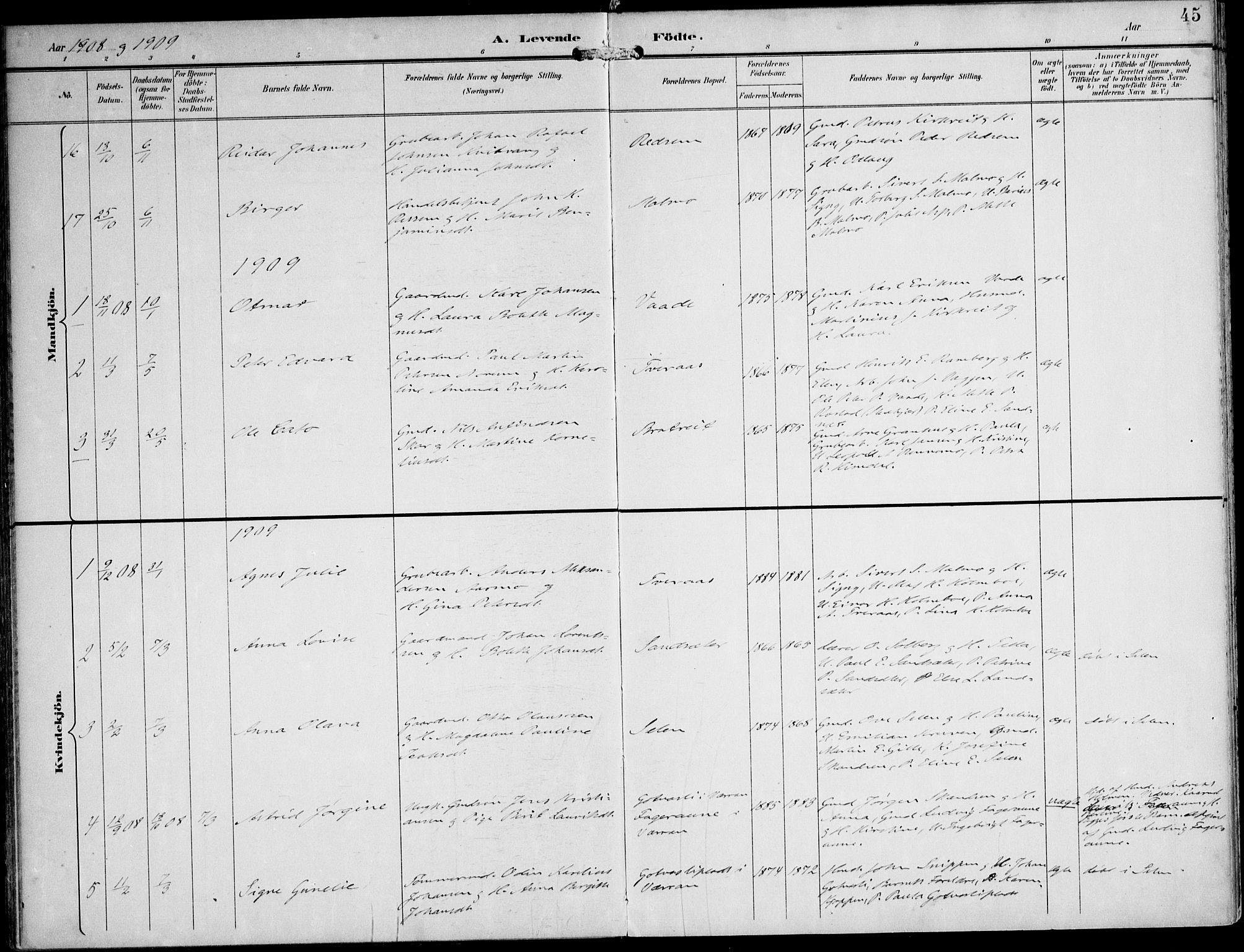 SAT, Ministerialprotokoller, klokkerbøker og fødselsregistre - Nord-Trøndelag, 745/L0430: Ministerialbok nr. 745A02, 1895-1913, s. 45