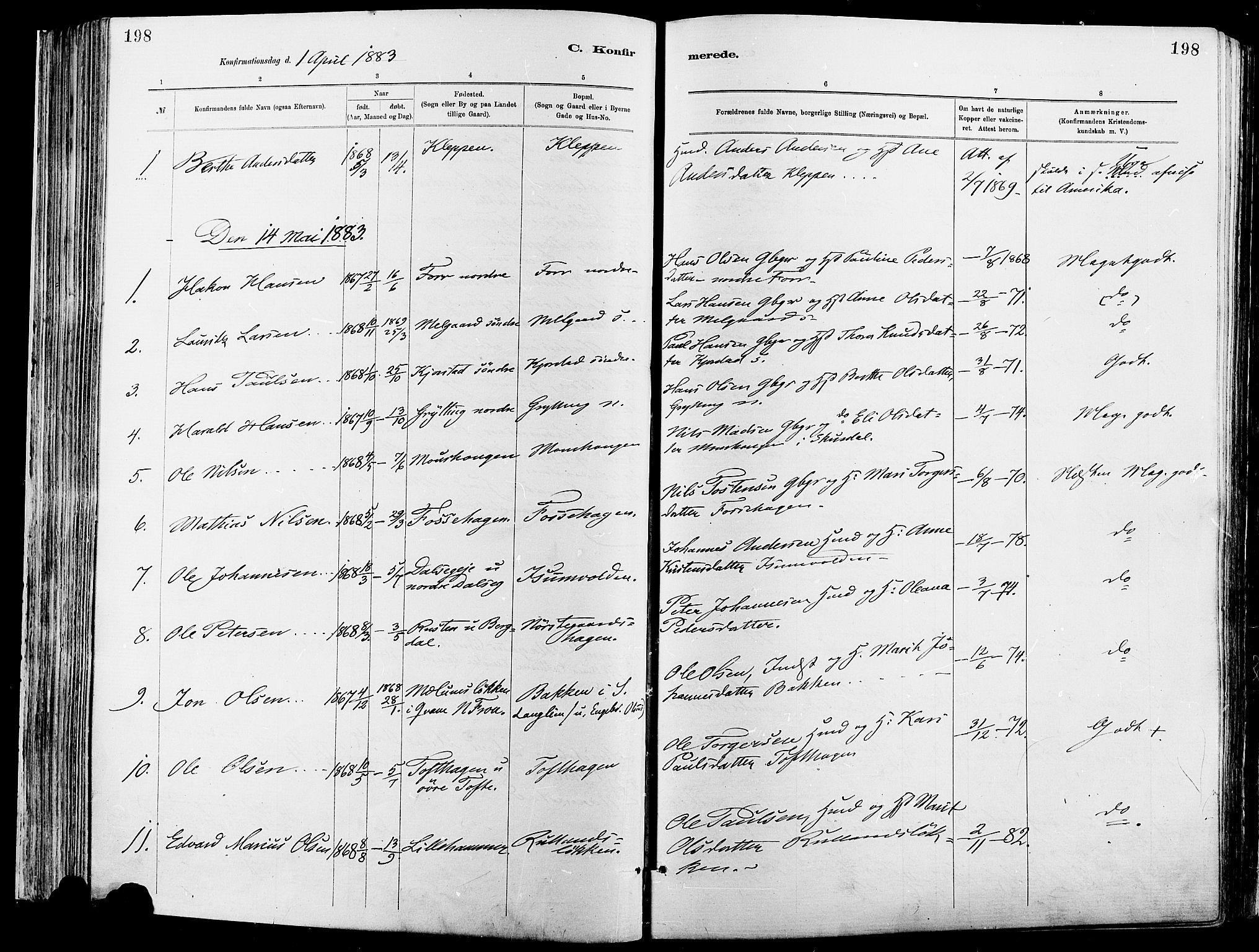 SAH, Sør-Fron prestekontor, H/Ha/Haa/L0003: Ministerialbok nr. 3, 1881-1897, s. 198
