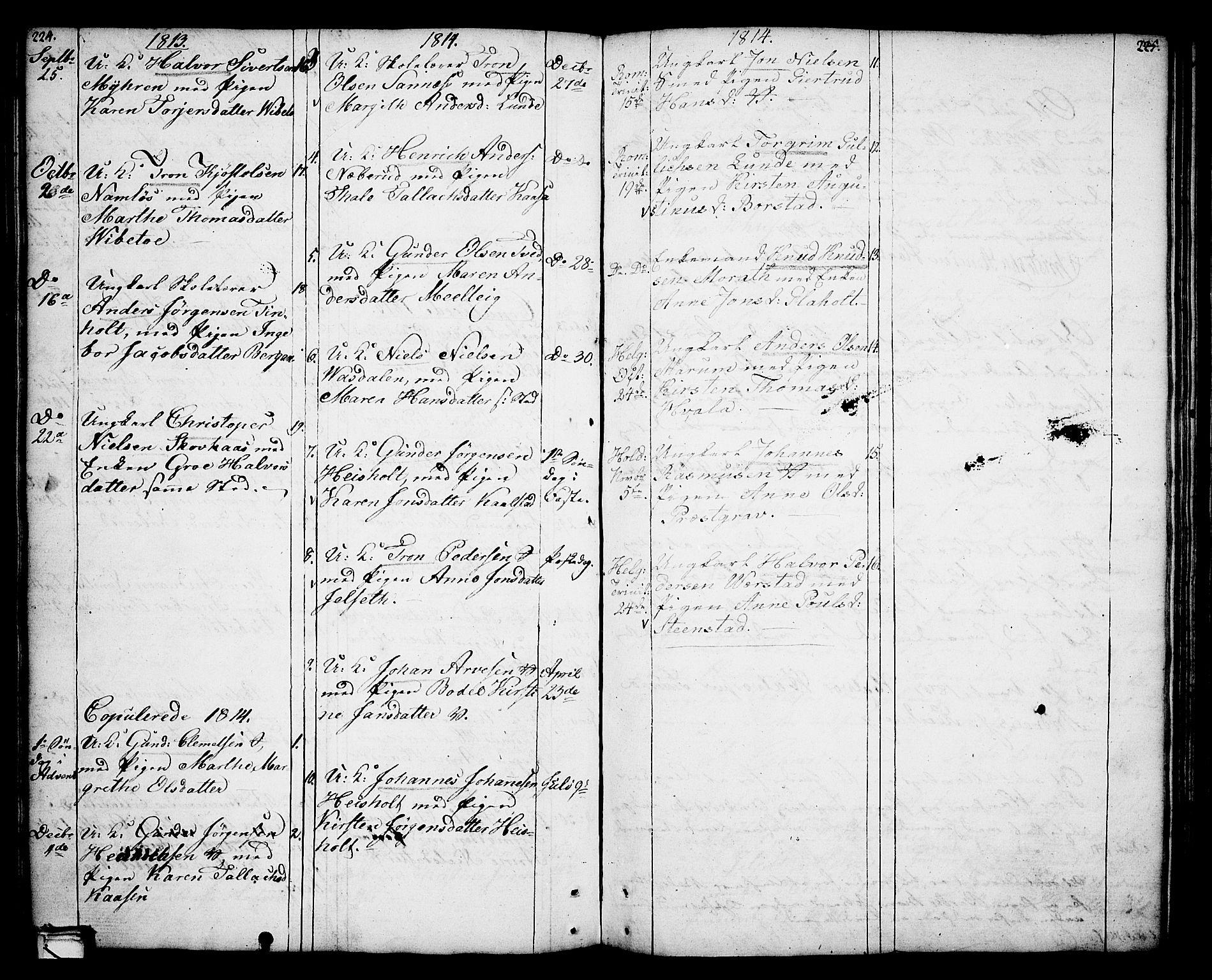 SAKO, Holla kirkebøker, F/Fa/L0002: Ministerialbok nr. 2, 1779-1814, s. 224-225
